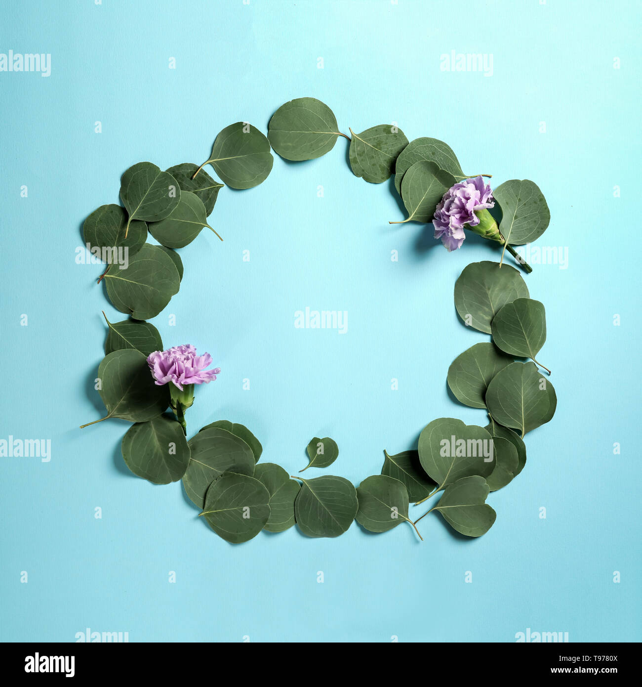Frame made of green eucalyptus leaves and flowers on color background - Stock Image
