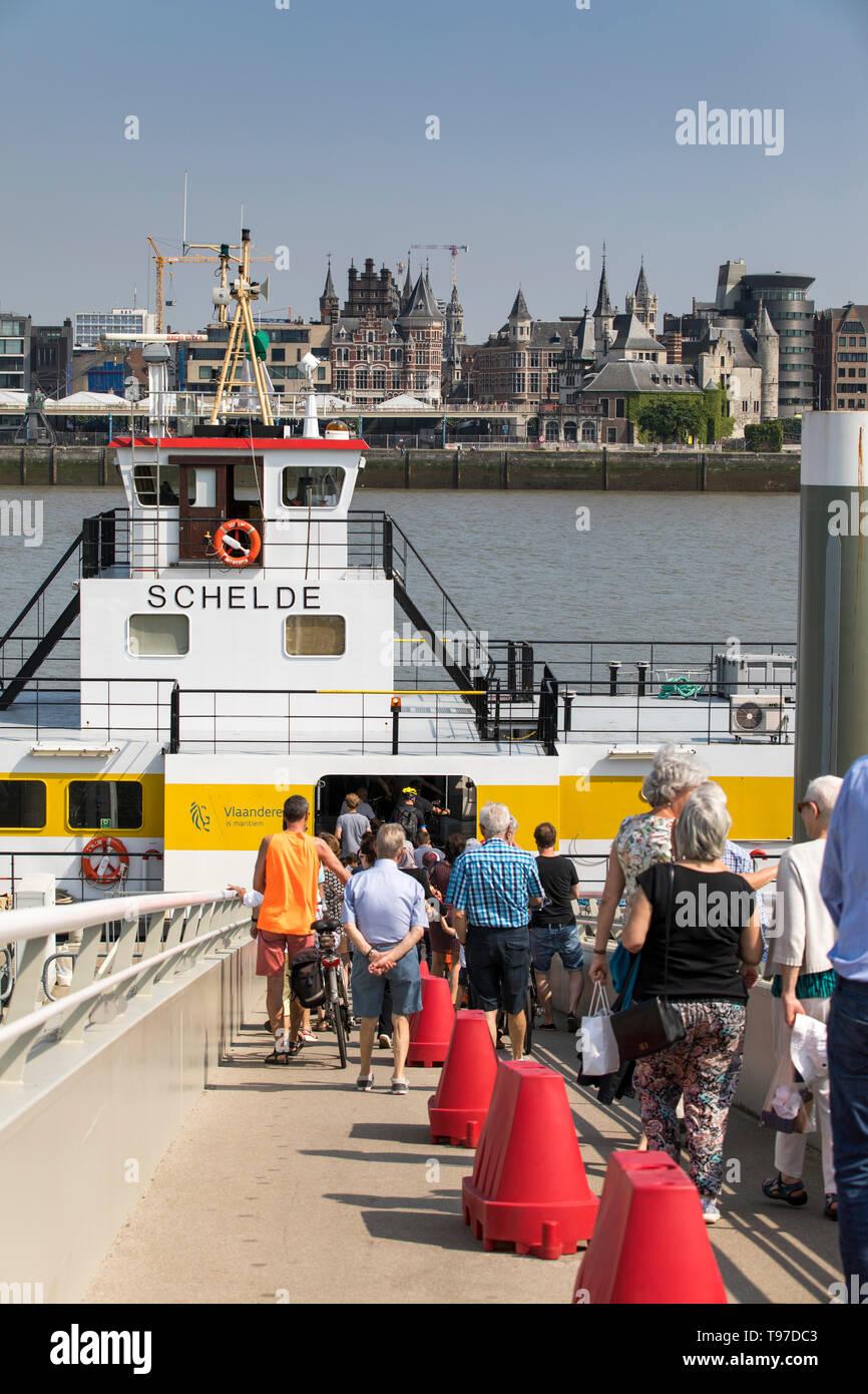 Fähre für Fussgänger und Radfahrer, über die Schelde, hier am Anleger am linken Schelde Ufer, Antwerpen, Flandern, Belgien, Stock Photo
