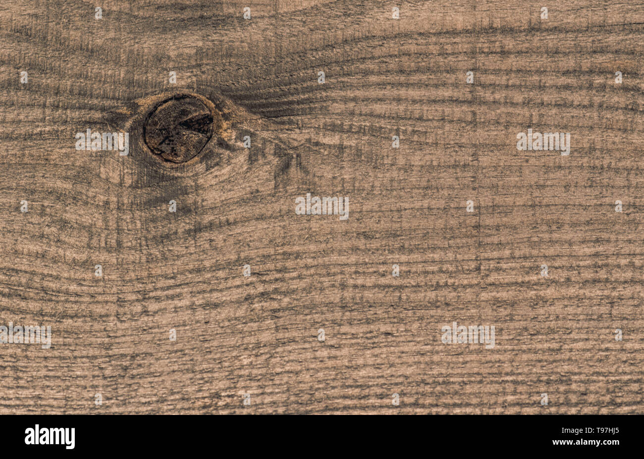 background texture of old wooden plank with the remnants of the branch - Stock Image