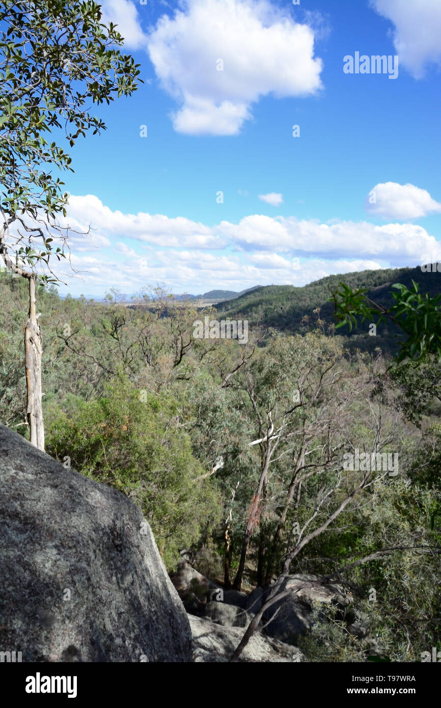 View looking over temperate forests north of Tamworth NSW Australia. - Stock Image