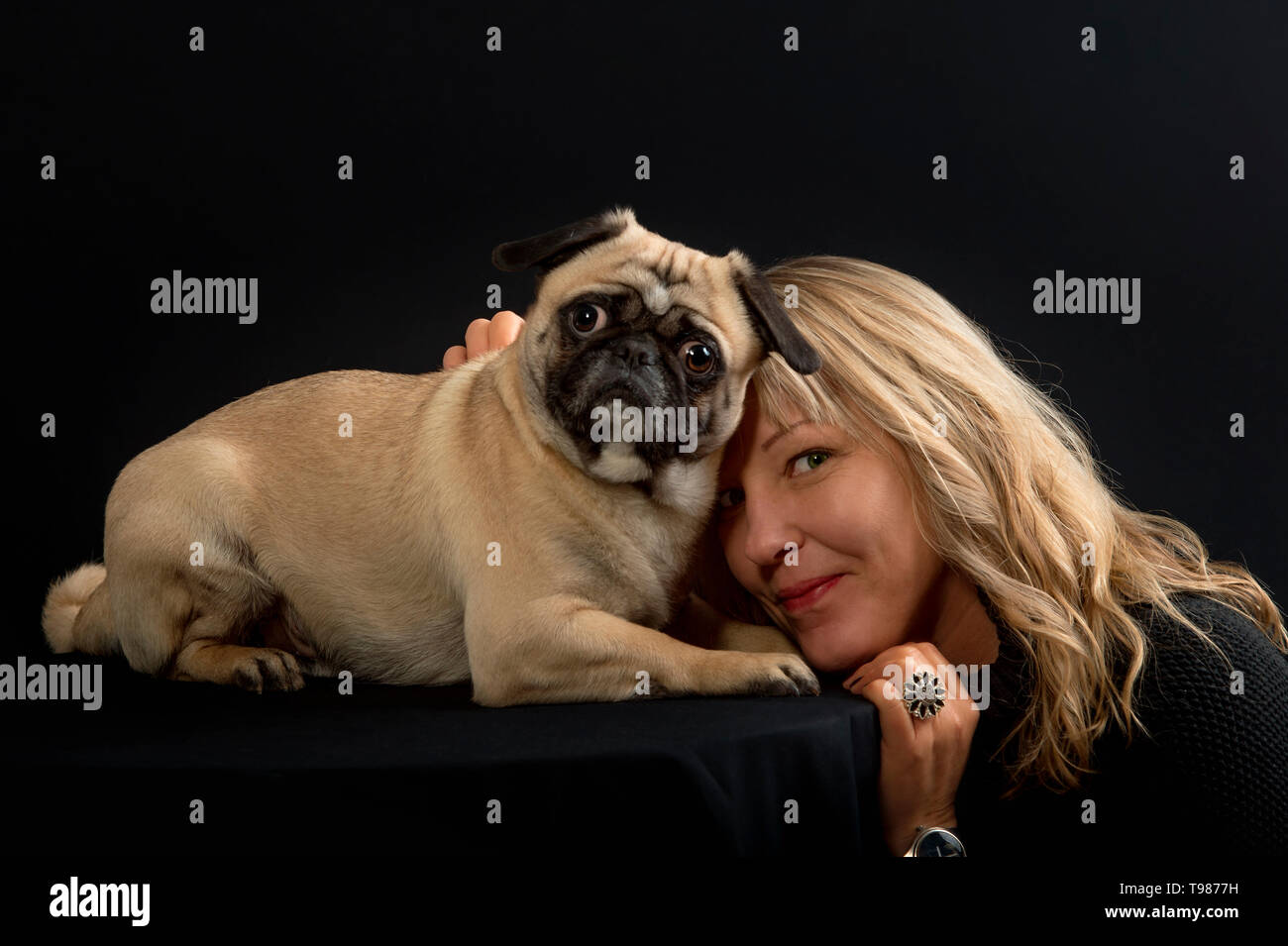 A woman with long blond hair cuddles with her dog (pug). In the studio, the blond hair shines beautifully in front of black background. - Stock Image