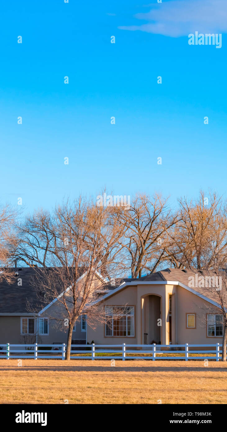 Vertical Charming houses and tall leafless trees under blue sky on a sunny day - Stock Image