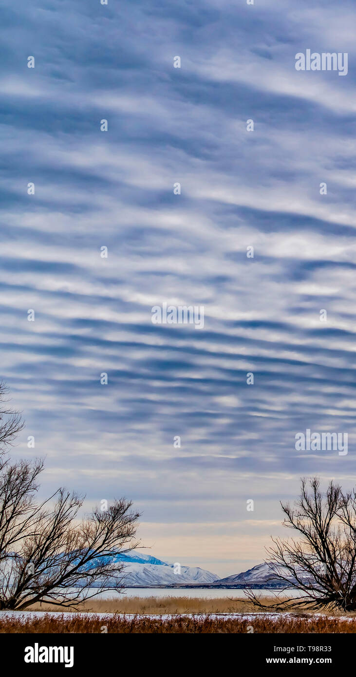 Clear Vertical Defocused view of a dramatic blue sky filled with white puffy clouds - Stock Image