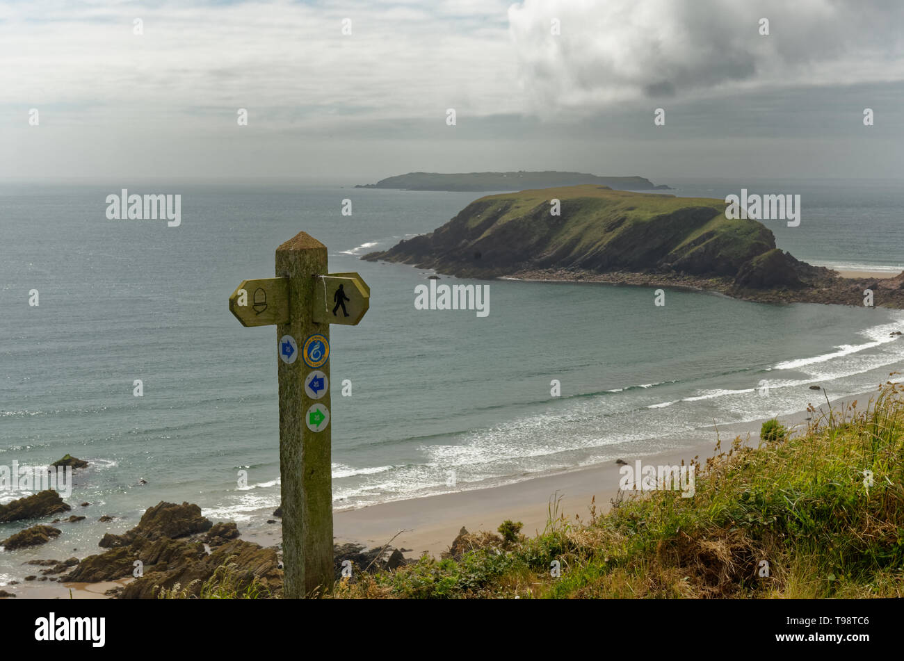 Pembrokeshire Coast Path marker post near Martin's Haven on the Marloes Peninsula coastal path in Wales - Stock Image