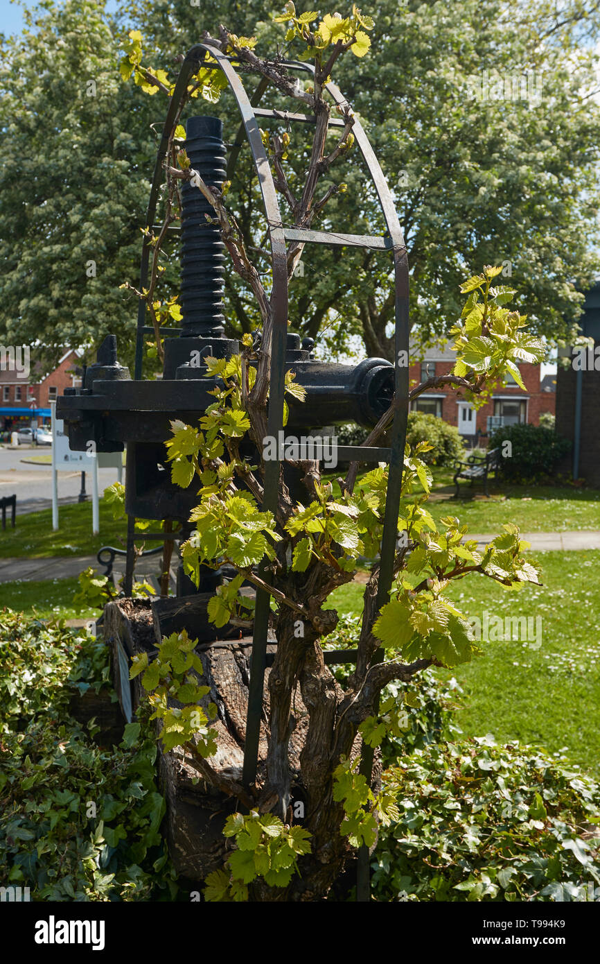 Wine press feature outside the library and museum Alcester in the Vale of Evesham, England, United Kingdom, Europe - Stock Image