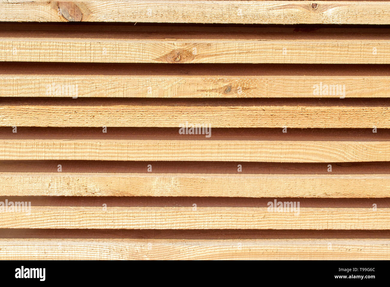 wood beams background with a clear tree structure - Stock Image
