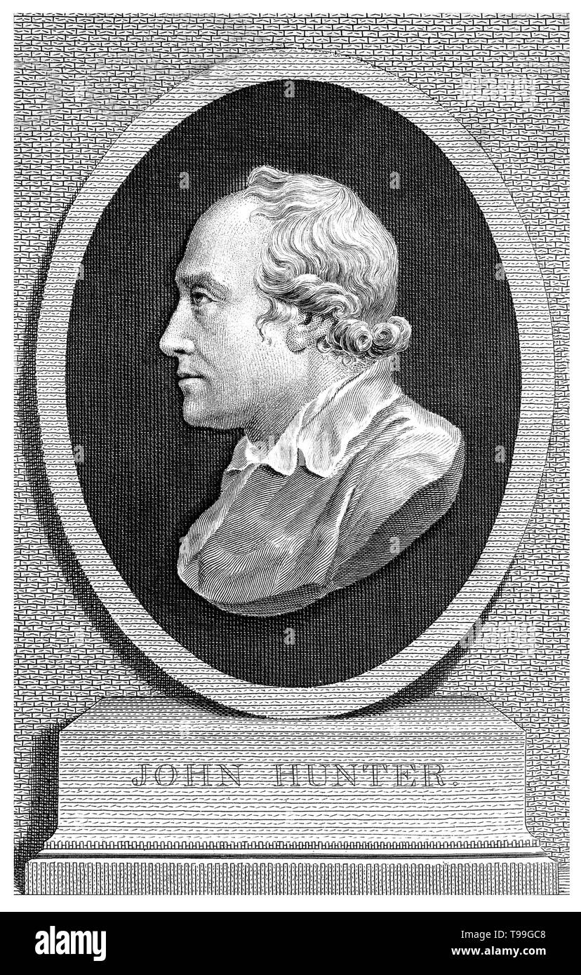John Hunter (February 13, 1728 - October 16, 1793) was a Scottish surgeon. He was an early advocate of careful observation, scientific method in medicine, and an excellent anatomist. Among his numerous contributions to medical science are: 1) study of human teeth, 2) extensive study of inflammation, 3) fine work on gunshot wounds, 4) some work on venereal diseases, including possibly inoculating himself with venereal disease in 1767 to carry out further study, 5) an understanding of the nature of digestion and verifying that fats are absorbed into the lacteals, a type of small intestine lympha - Stock Image