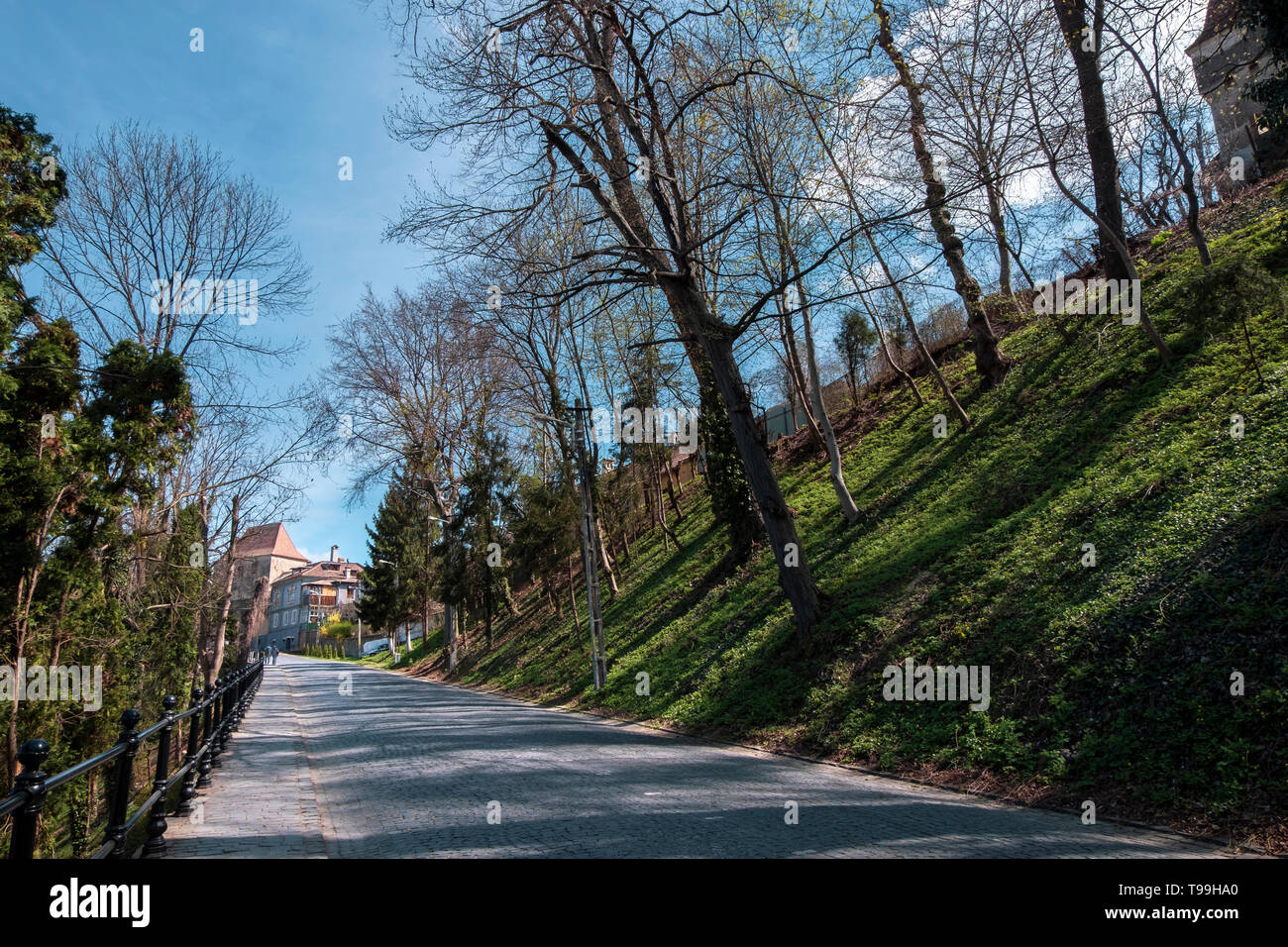 Alley surrounded by nature, leading to the Tailors Tower. Wide street view on a sunny day in spring - Stock Image