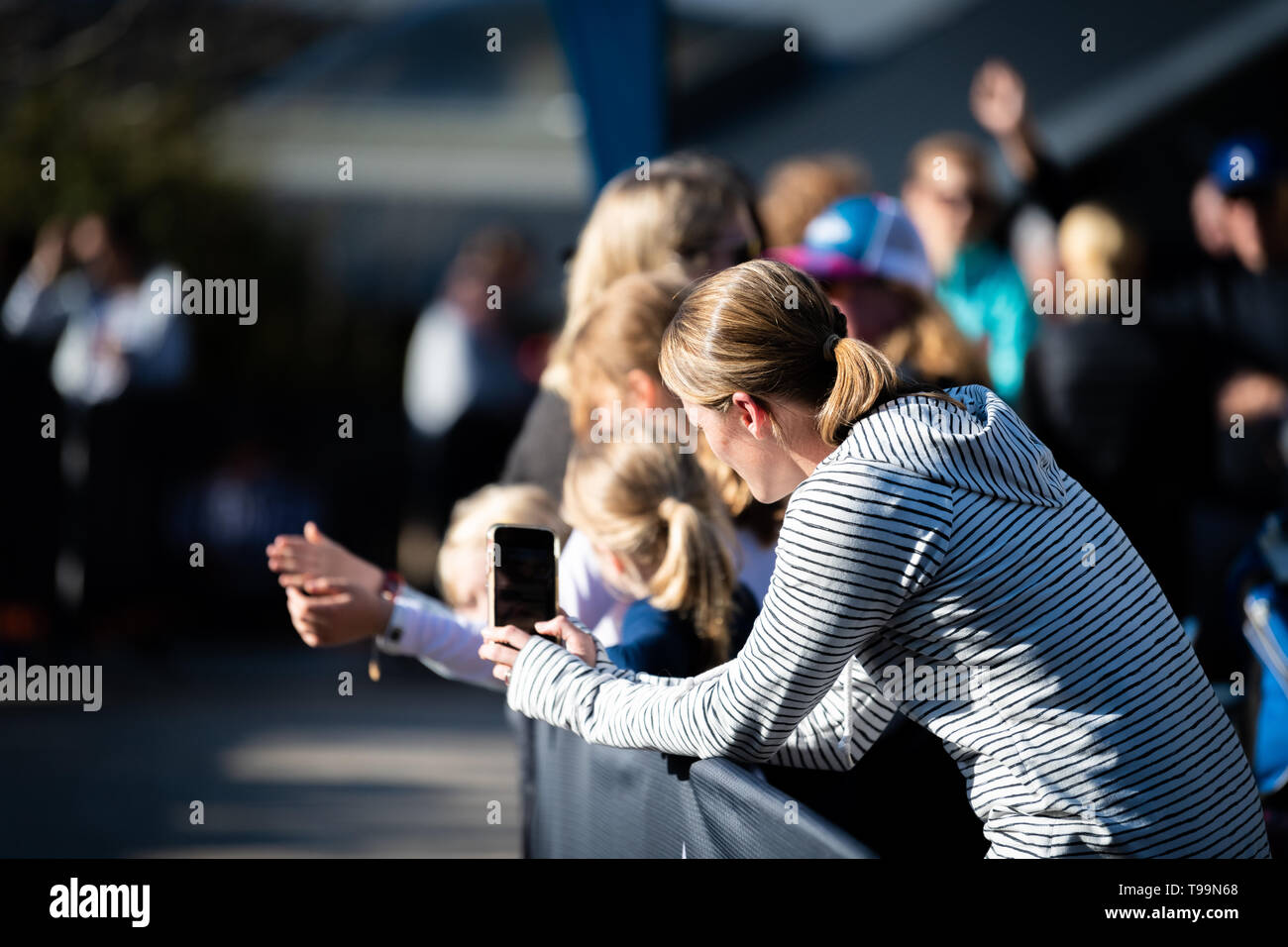 Blue Mountains, Australia - April 16 2019: Ultra-Trail Australia UTA11 race. Woman videos runners on her phone about to finish on home stretch. - Stock Image