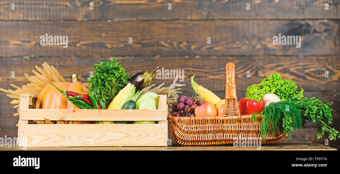 Grocery shop concept  Delivery service fresh vegetables from