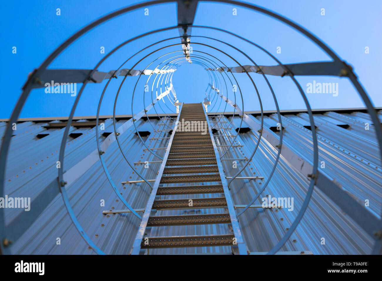 Vertical metal staircase to the roof of the hangar. Staircase surrounded by a protective frame. - Stock Image