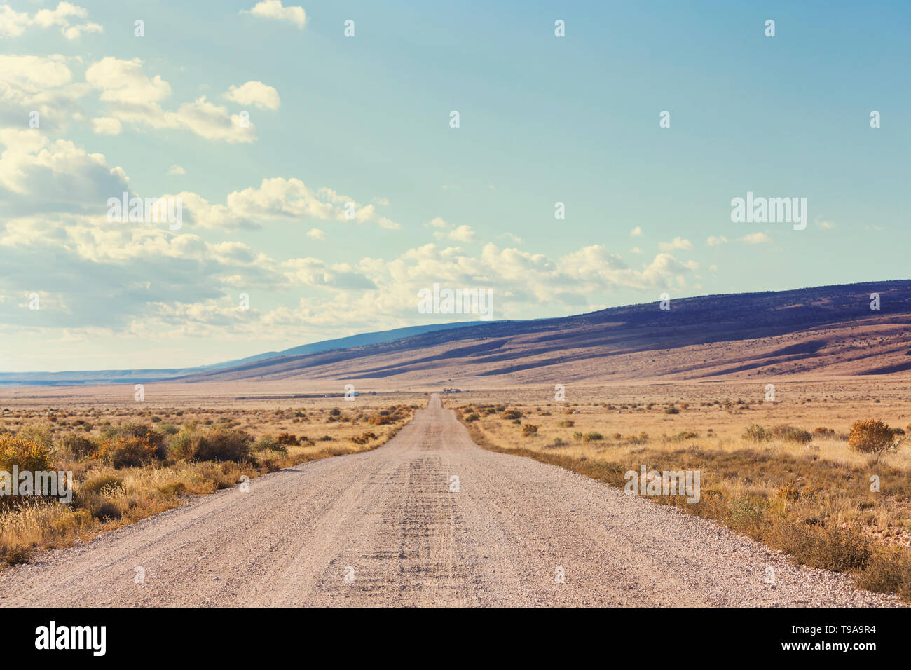 Road in the prairie country. Deserted natural travel background. - Stock Image