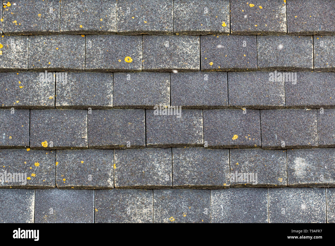 close up of external wall tiles on a 1960s built house in the UK - Stock Image