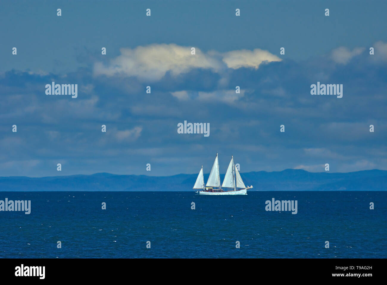 Sailboat on the Gulf of St. Lawrence Saint-Simon Quebec Canada - Stock Image