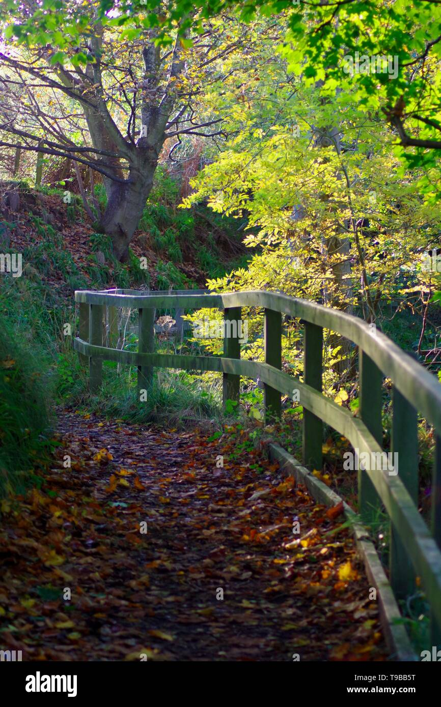 Wooden Fence by a Path along the River Don on an Autumn Day. Old Aberdeen, Scotland, UK. - Stock Image