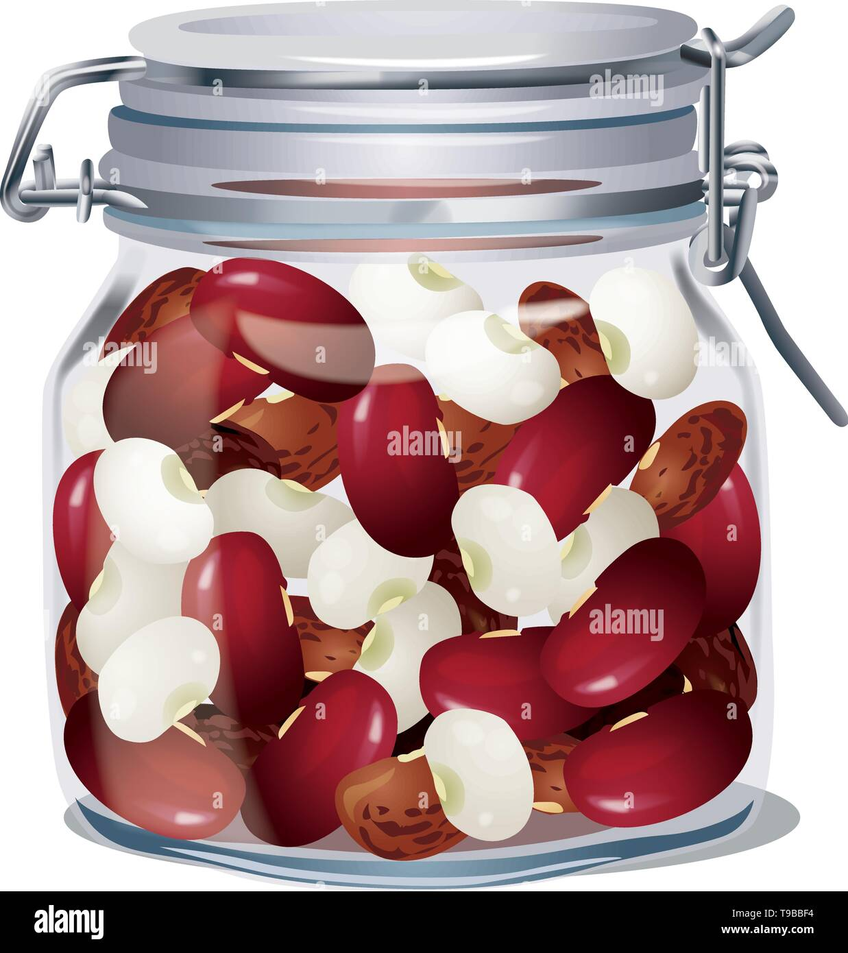 Glass jar with lid with beans inside. Isolated. Vector - Stock Vector