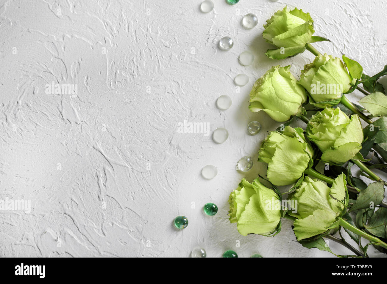 Beautiful Green Roses On White Background Stock Photo Alamy