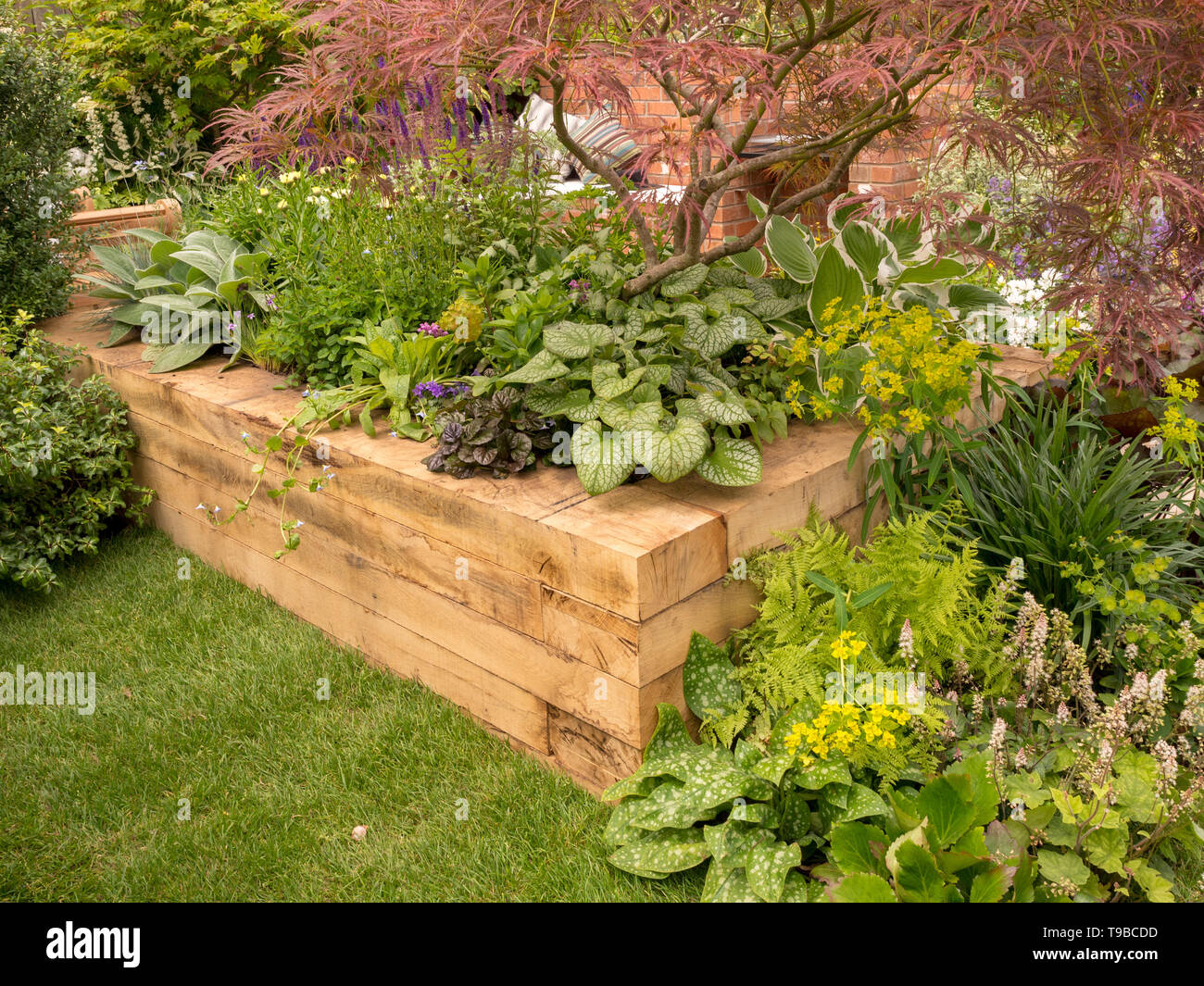 Raised bed in garden made from large timber pieces (new railway sleepers) - Stock Image