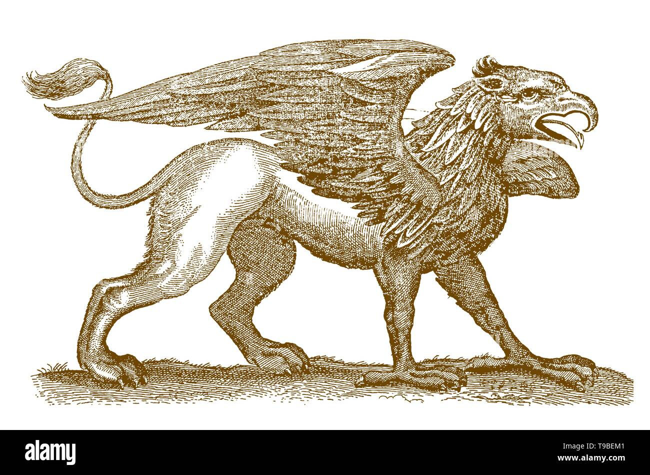 Mythical legendary hybrid creature griffin with the front of an eagle spreading its wings and the rear of a lion - Stock Image