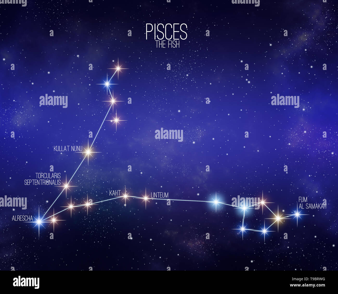 Pisces The Fish Zodiac Constellation Map On A Starry Space