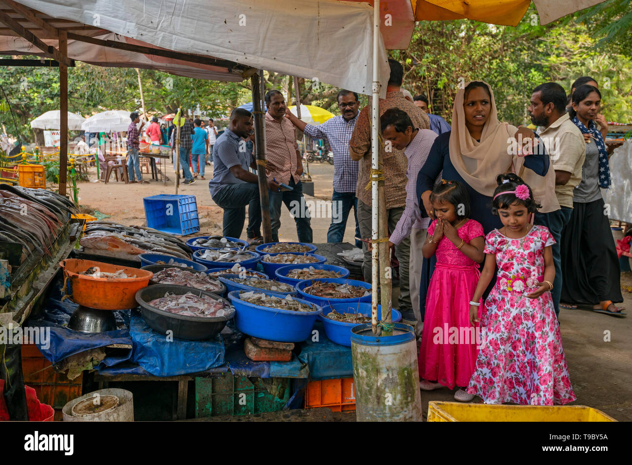 Horizontal view of children squirming at the fish market in Fort Kochi, India. - Stock Image