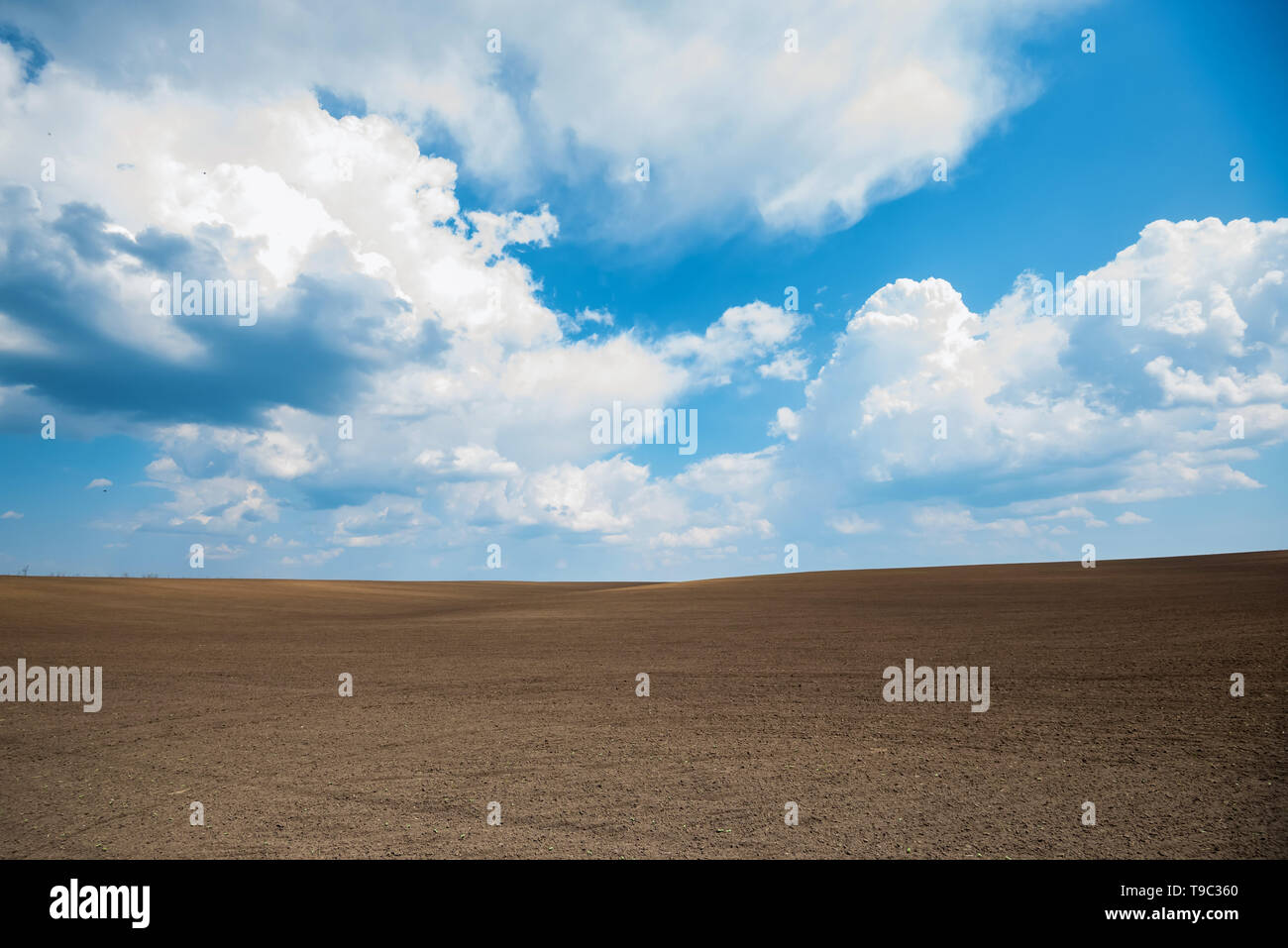 Natural landscape with empty spring farmland and blue sky - Stock Image
