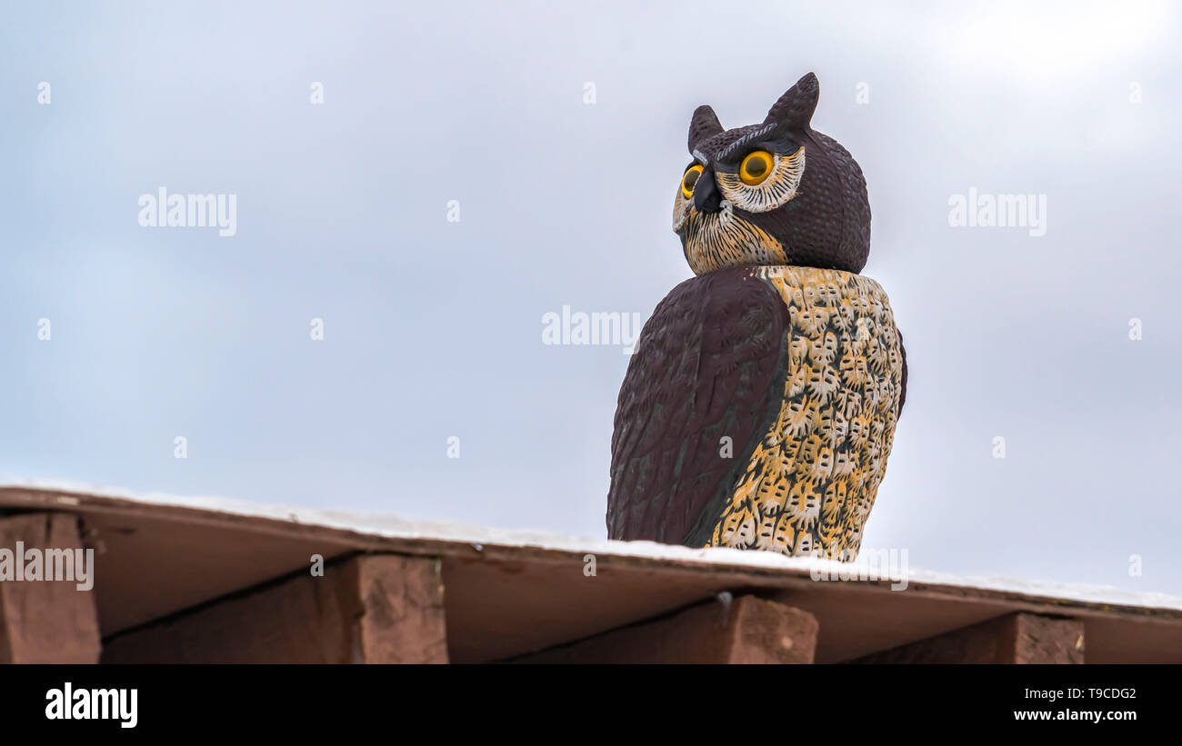 Panorama Close up of an owl sculpture on top of a roof against cloudy sky in winter Stock Photo