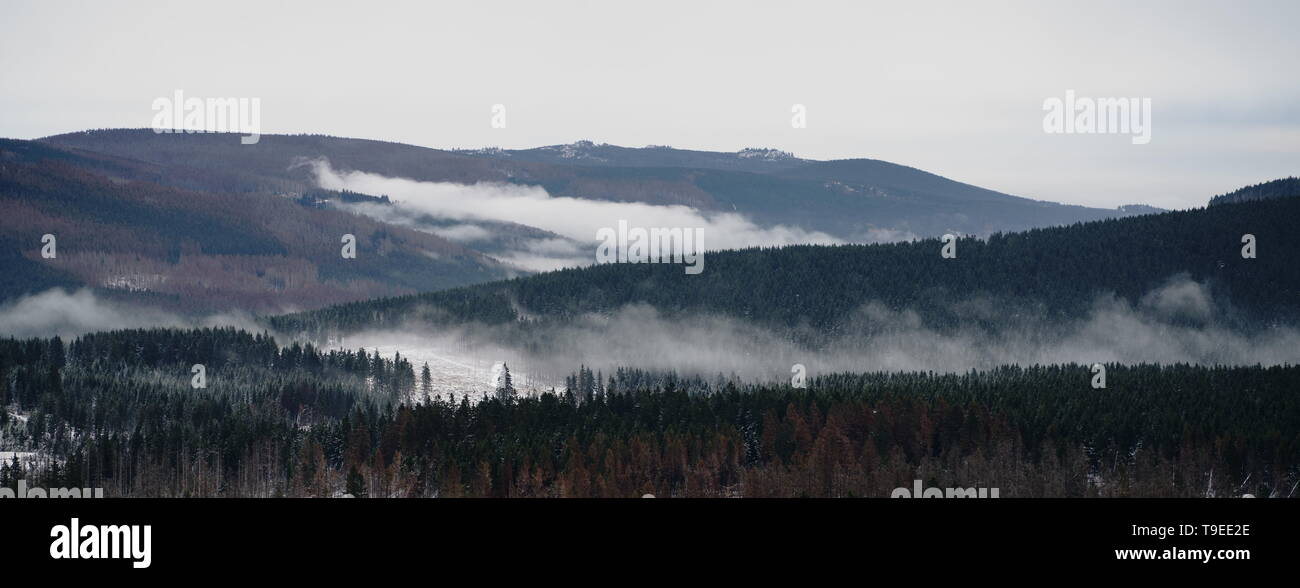 Fog over the forest in late autumn. Mystical landscape panorama of the wilderness in the Harz mountains, Harz National Park, northern central Germany. - Stock Image
