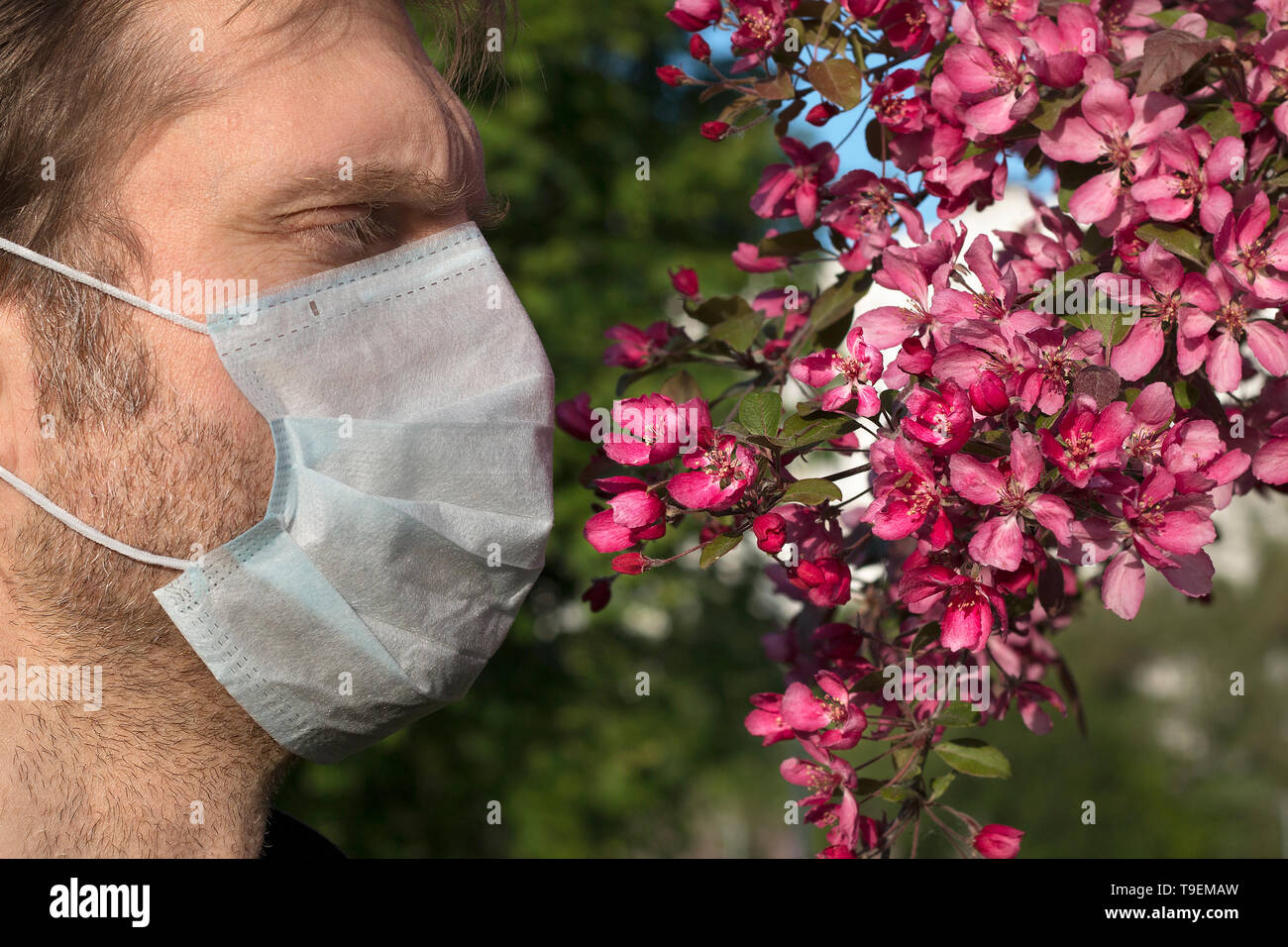 Cropped view of man with medical respirator on his face, apple-tree flowers. Lack of oxygen, weak immunity, bad ecology - Stock Image
