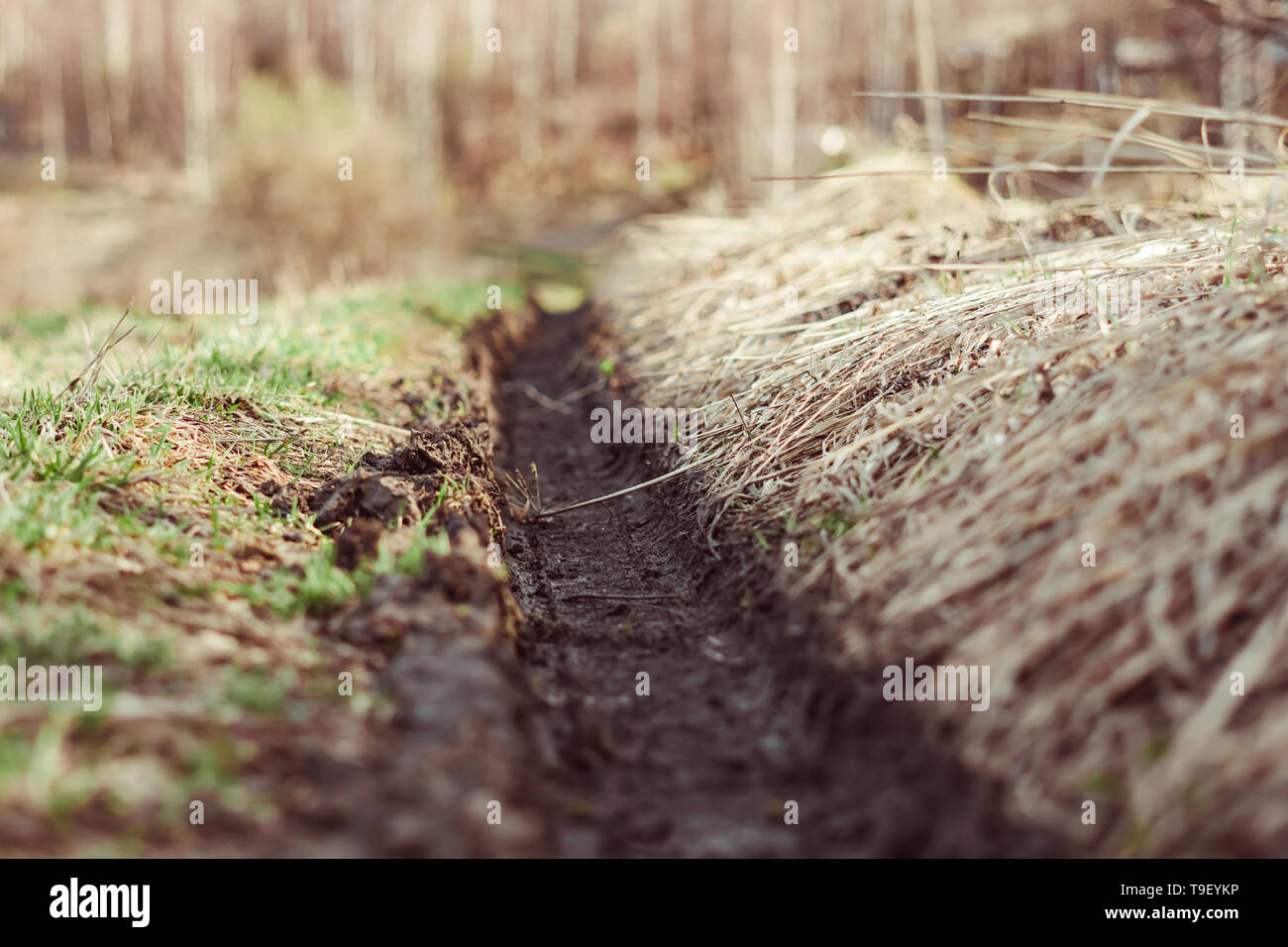 Traces of mud tires after a storm in Russian villages - Stock Image