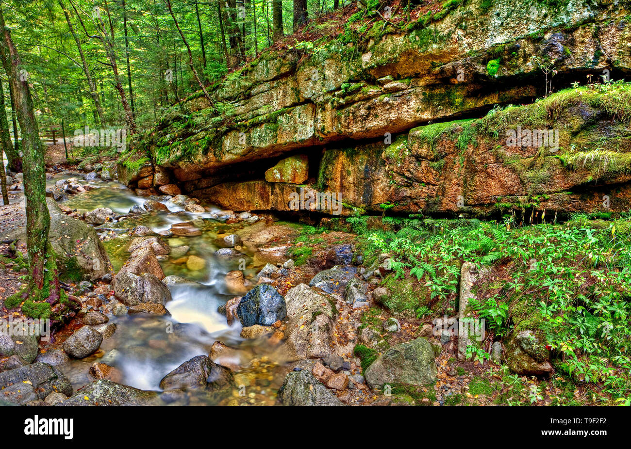 Flume Brook, The Flume, White Mountains, New Hampshire, USA Stock Photo
