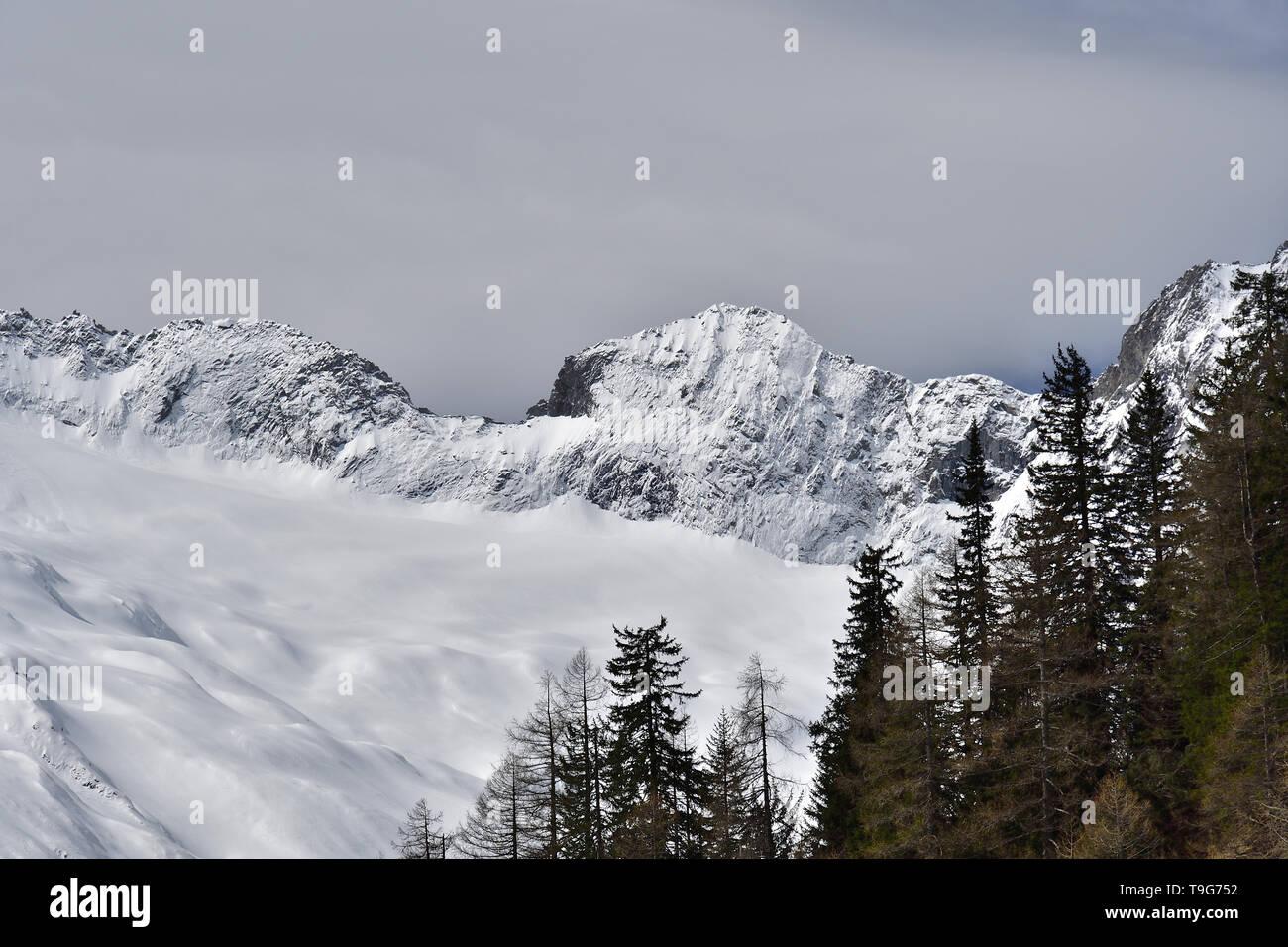 Picture taken in Chiareggio Valley, Rhaetian Alps - Stock Image
