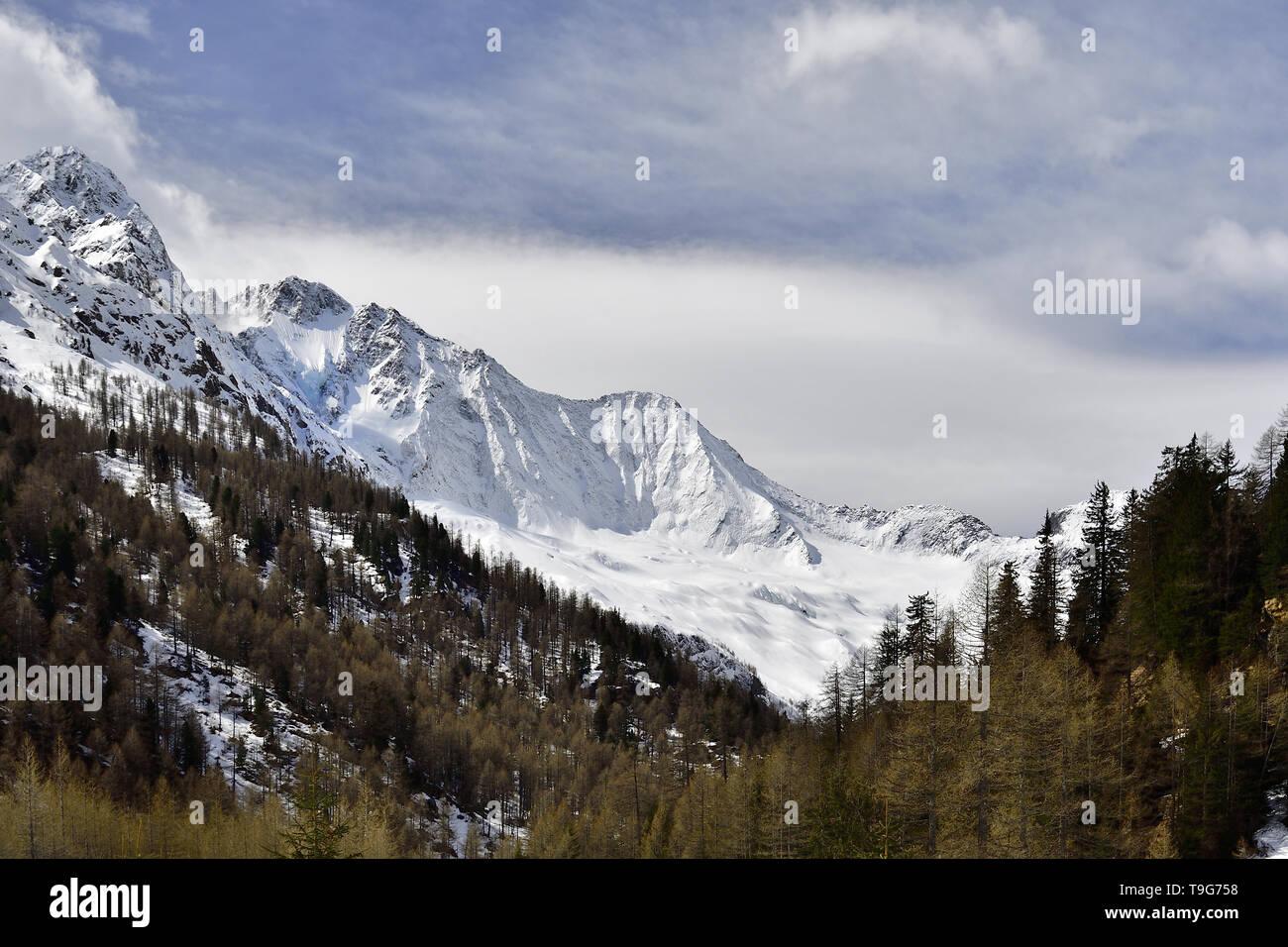 Picture of the Disgrazia hanging glacier in Chiareggio Valley in Rhaetian Alps - Stock Image