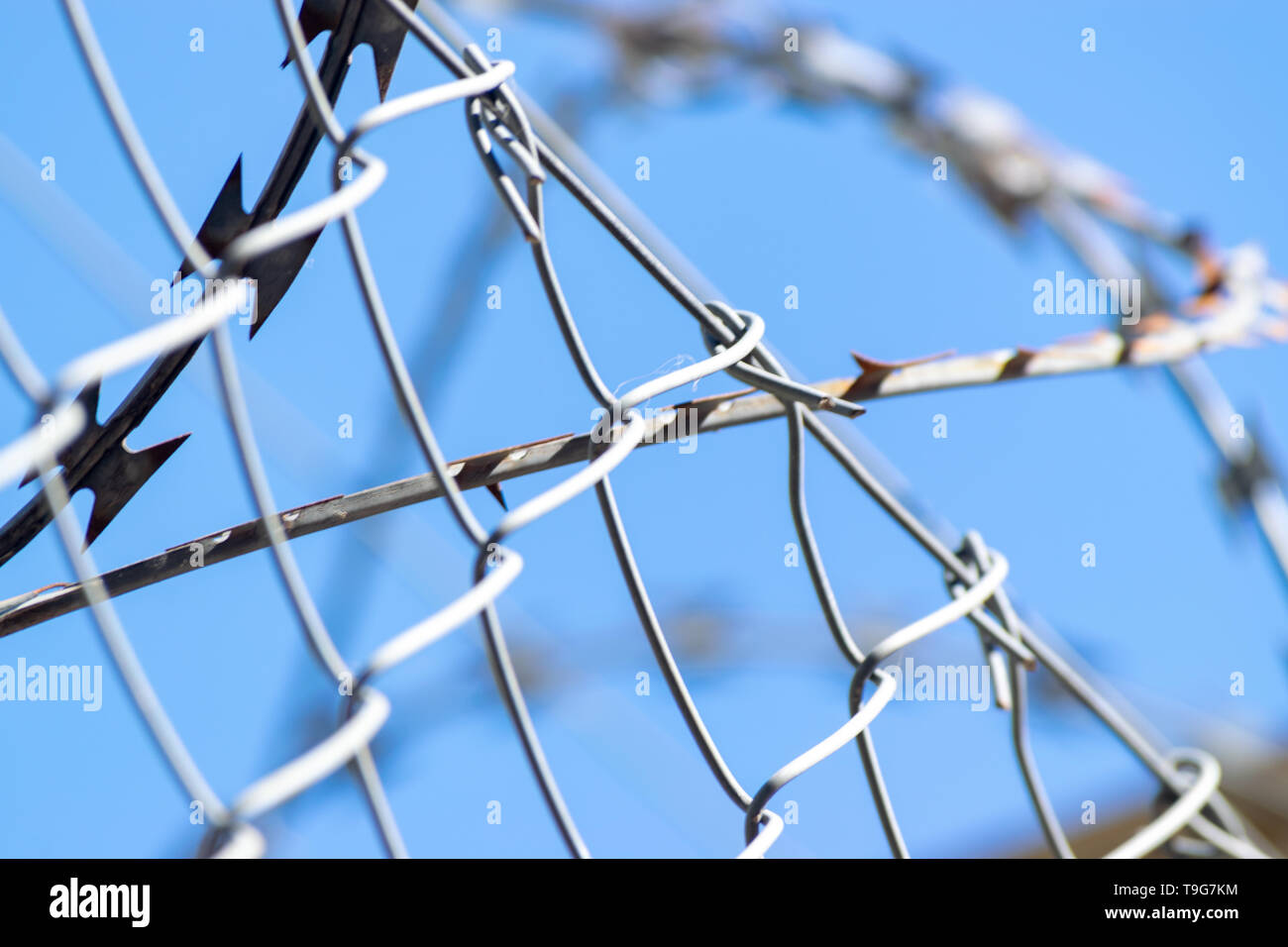 Details of barb wires in a sunny day - Stock Image