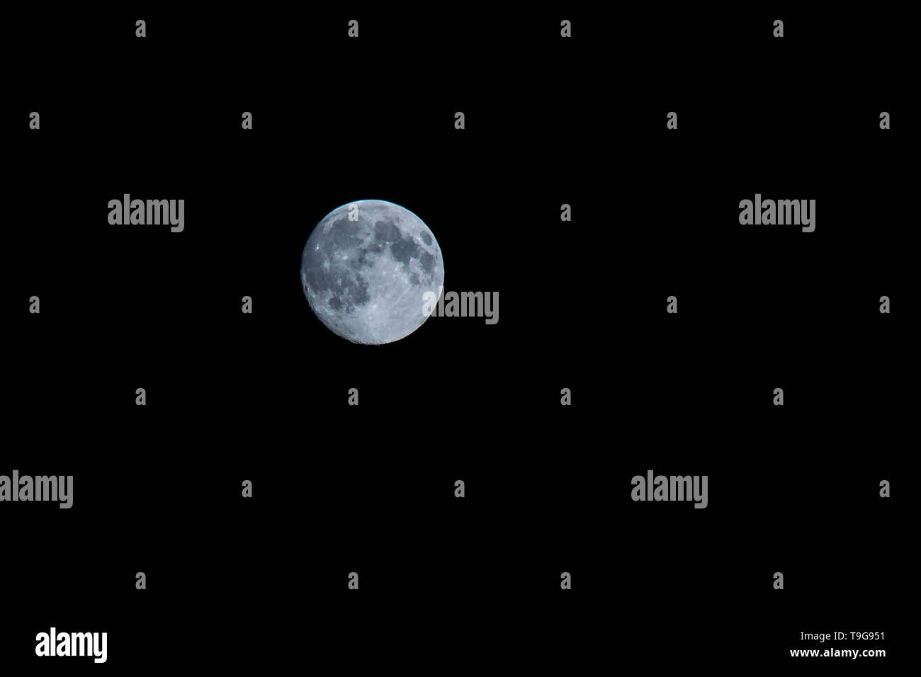 big round blue moon in the night sky - Stock Image