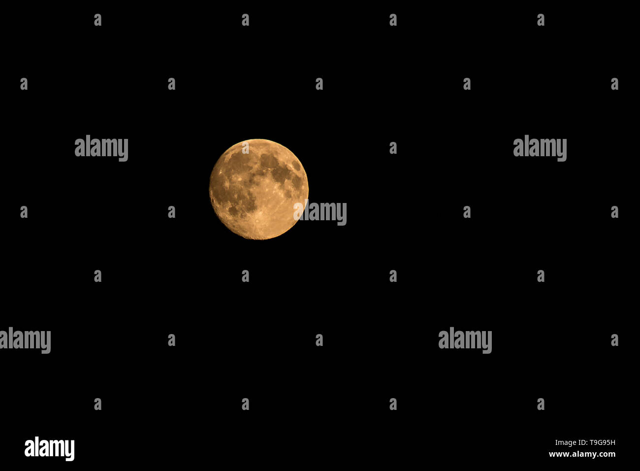 big round moon in the night sky - Stock Image