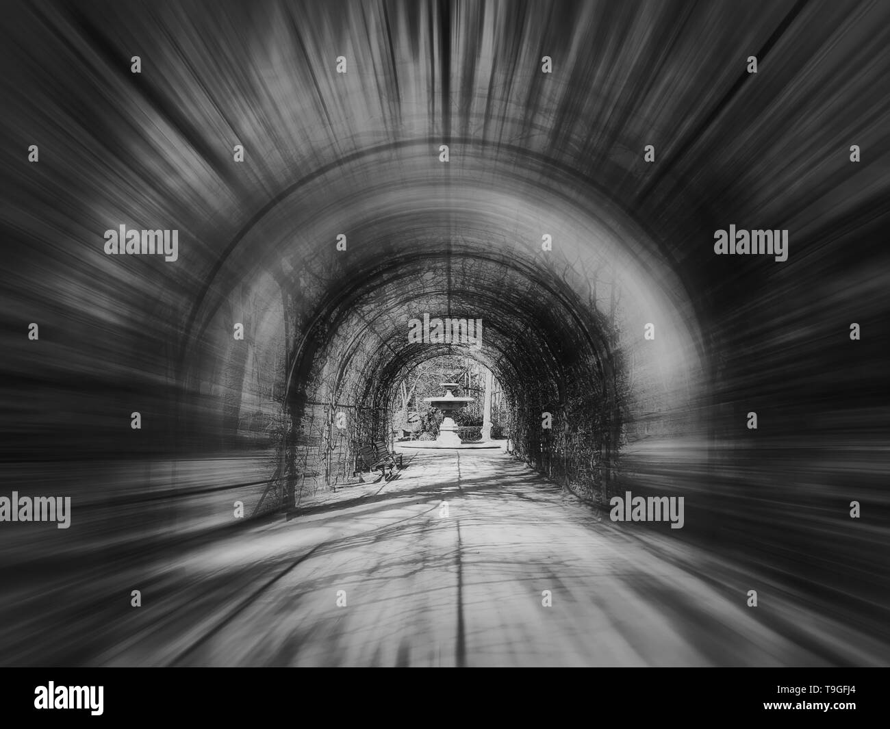 Abstract black and white scene, motion blur effect, of a tunnel alley in the Orangerie park in Strasbourg, France. - Stock Image