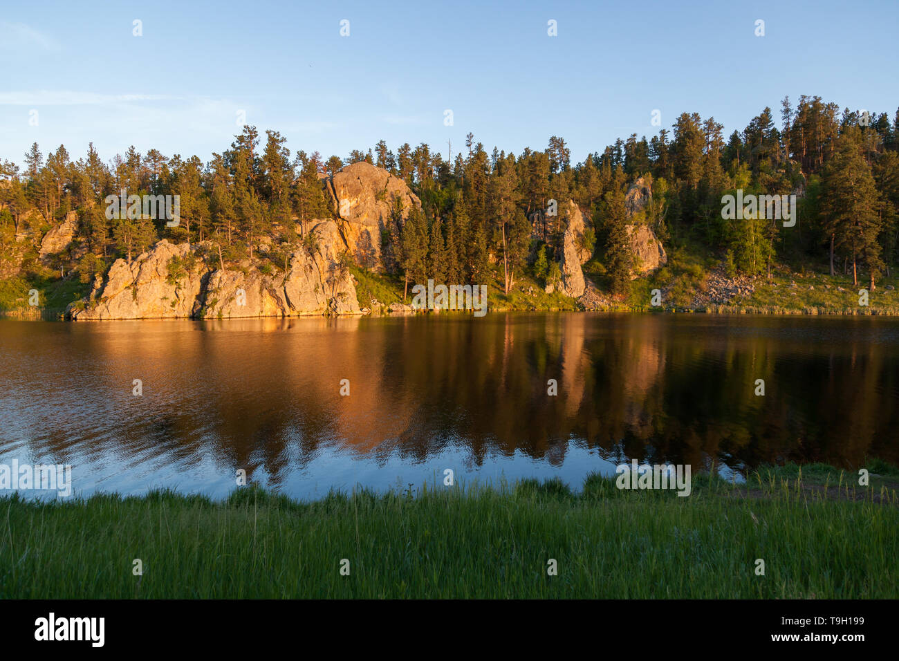 Golden sunshine in the late afternoon shines on a quartz rock formation and creates a soft reflection at Stockade Lake in Custer State Park, South Dak - Stock Image