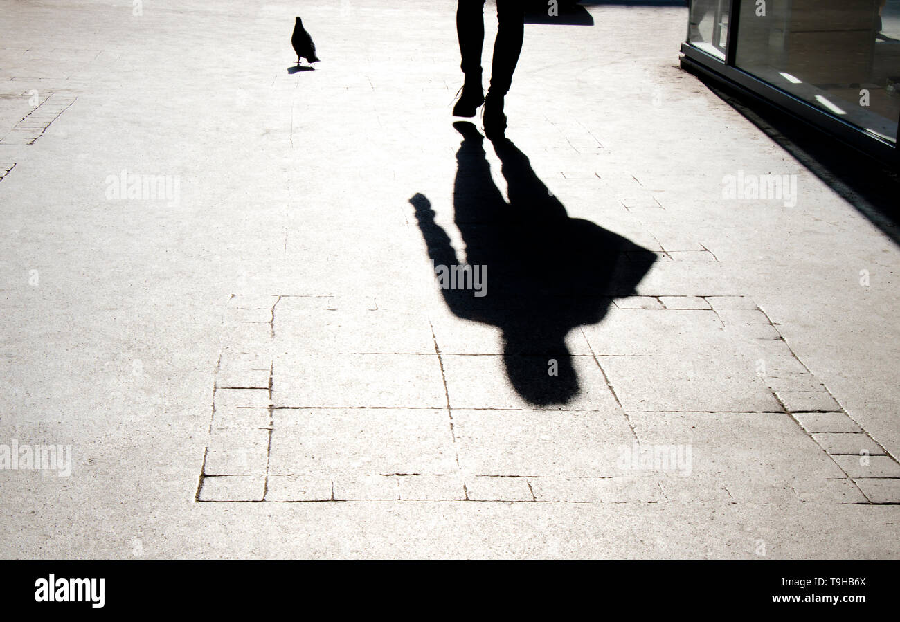 Blurry shadow silhouette of  a person and a pigeon walking on city sidewalk - Stock Image