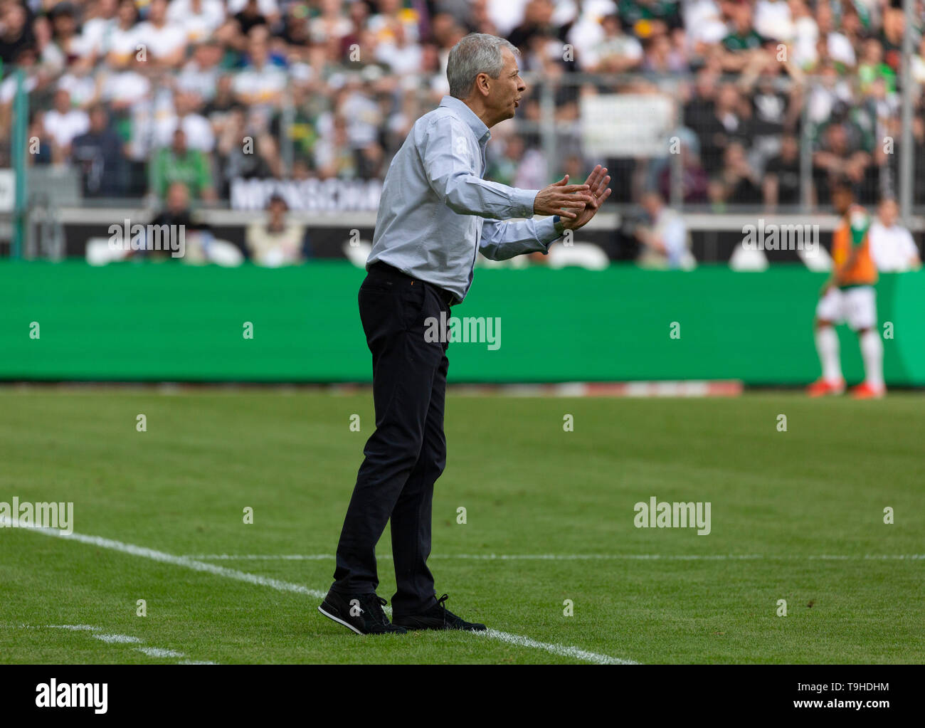 sports, football, Bundesliga, 2018/2019, Borussia Moenchengladbach vs. BVB Borussia Dortmund 0-2, Stadium Borussia Park, head coach Lucien Favre (BVB), DFL REGULATIONS PROHIBIT ANY USE OF PHOTOGRAPHS AS IMAGE SEQUENCES AND/OR QUASI-VIDEO - Stock Image