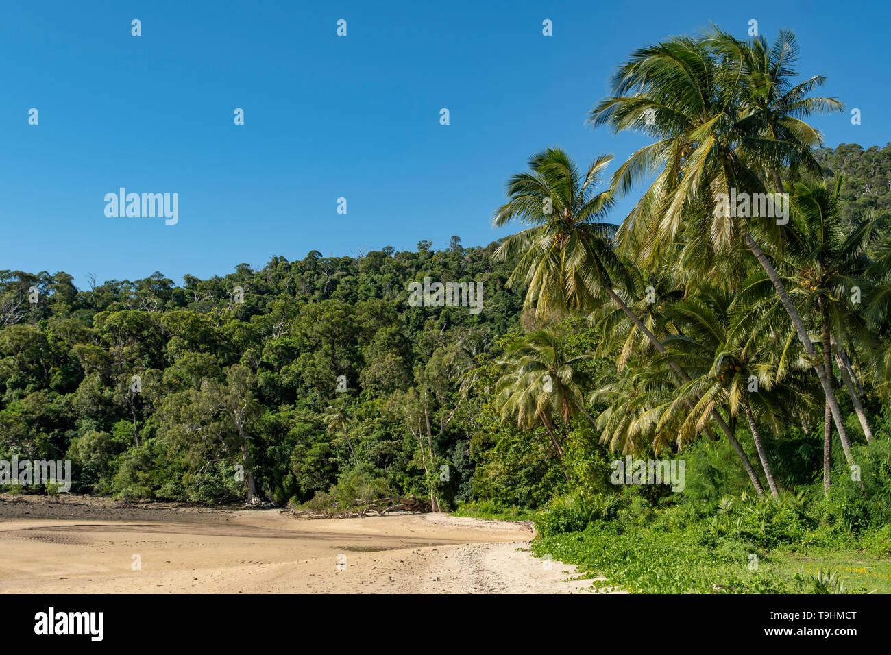 Beach on Dunk Island, Queensland - Stock Image