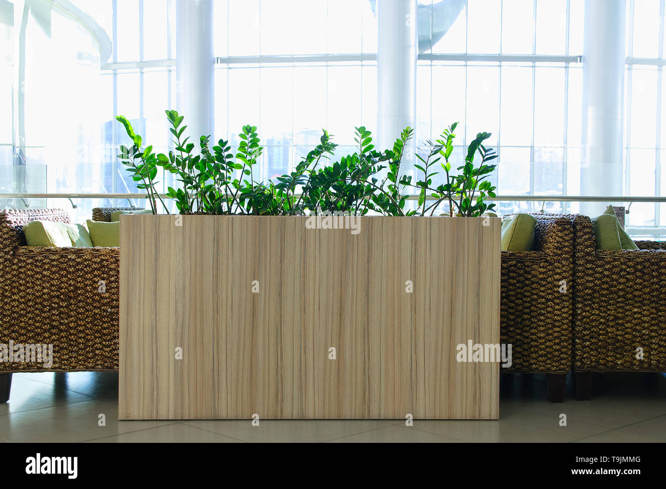 The interior of the cafe. Tables and rattan chairs. Ornamental plants. - Stock Image