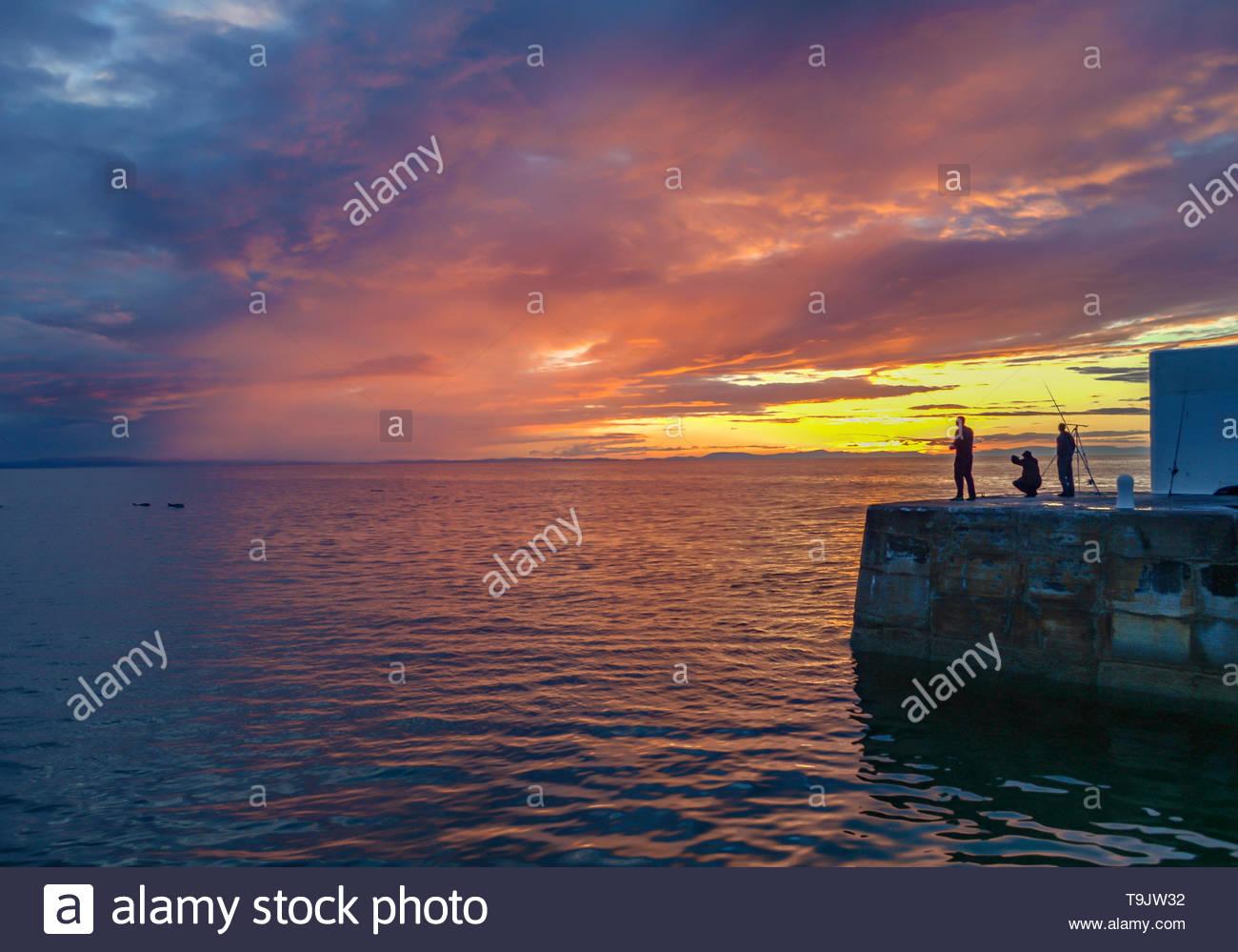 Sunset, Fishing, Dolphins - Stock Image