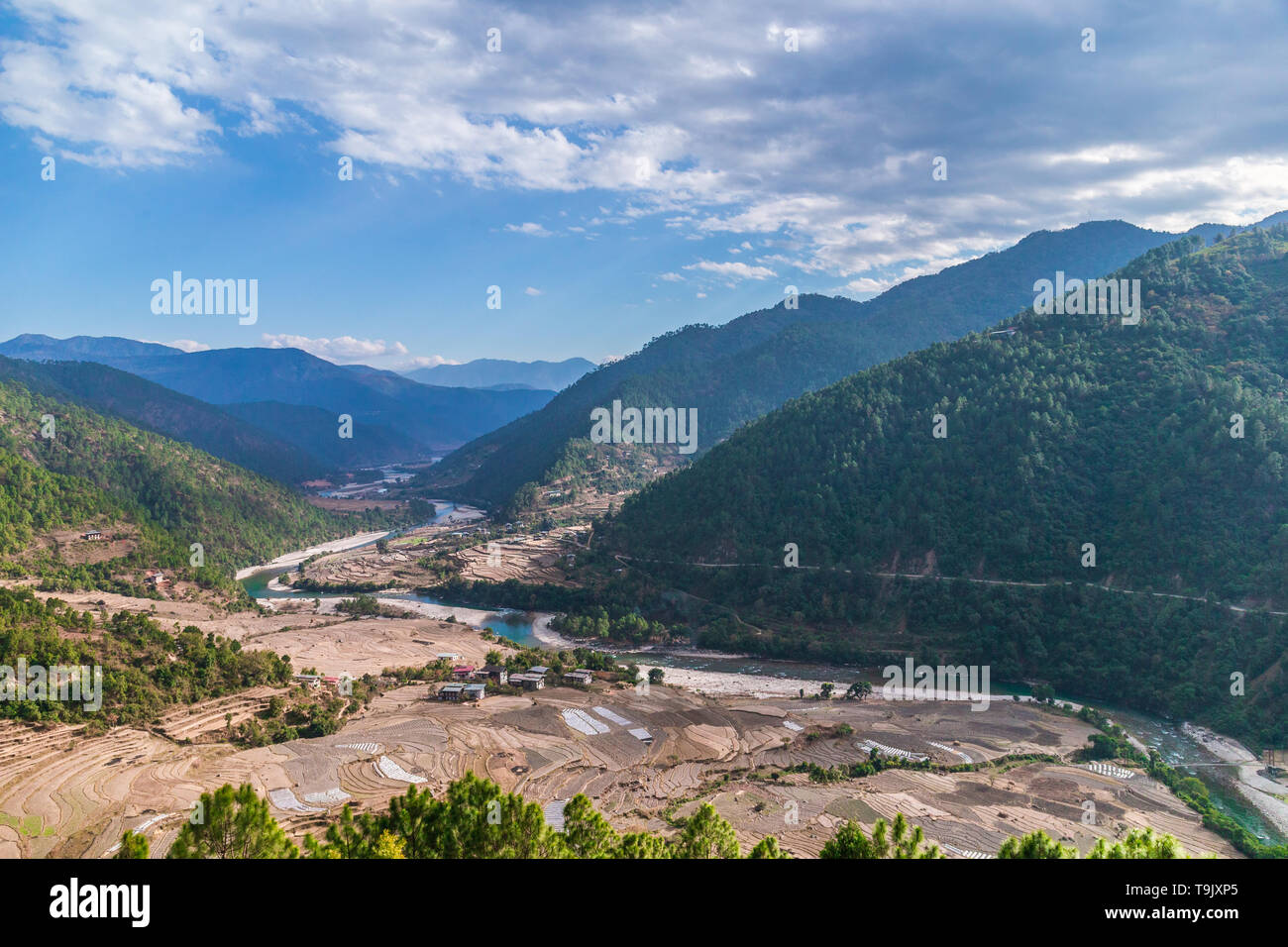 Valley in Bhutan near Punakha with rice fields and typical houses in winter - Stock Image
