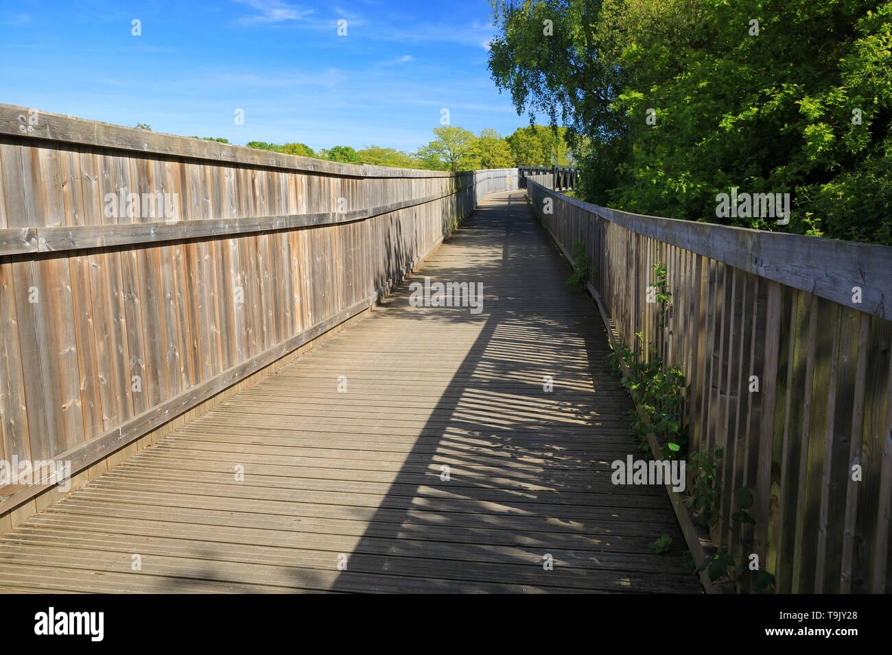 Exe estuary trail, Topsham, Devon, England, UK - Stock Image
