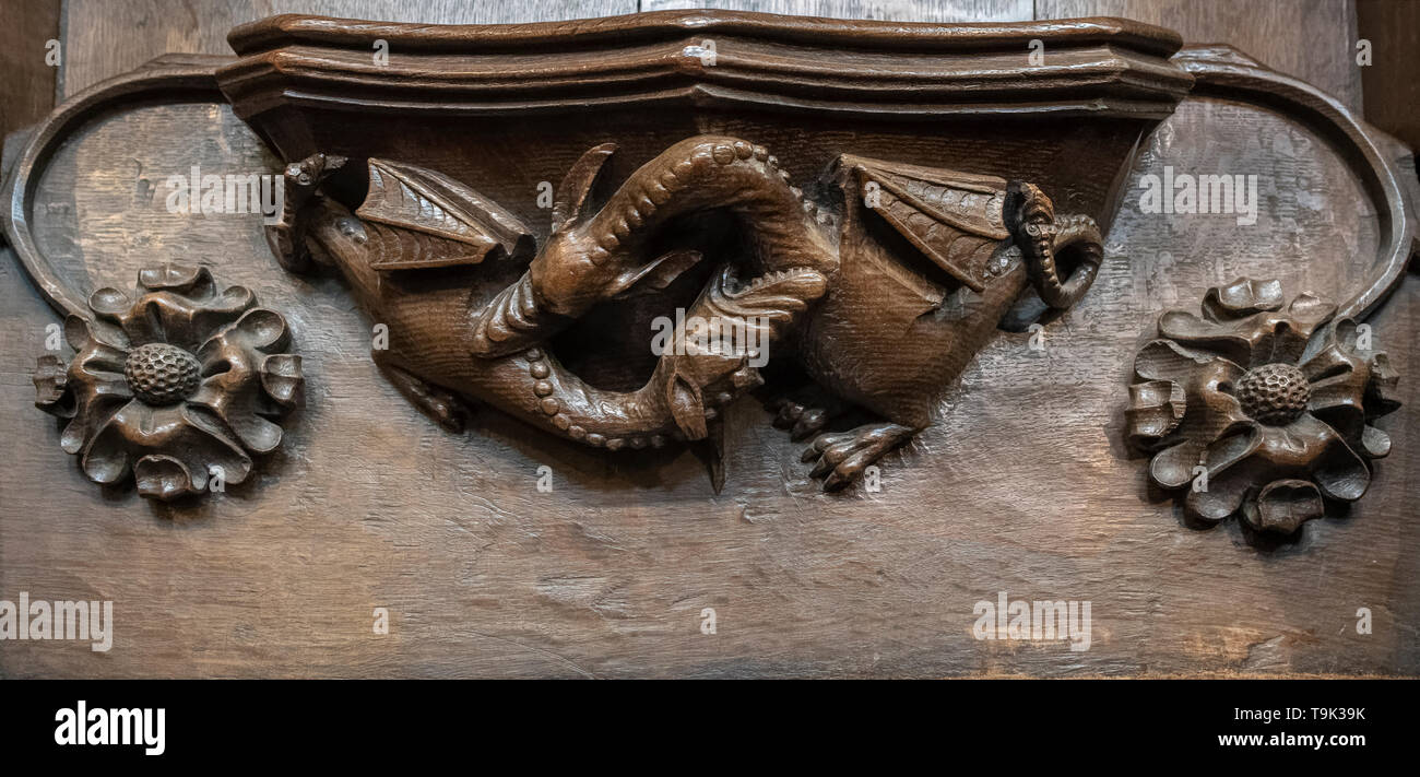 A medieval misericord depicting two dragons fighting, Ripon Cathedral, Yorkshire, UK - Stock Image