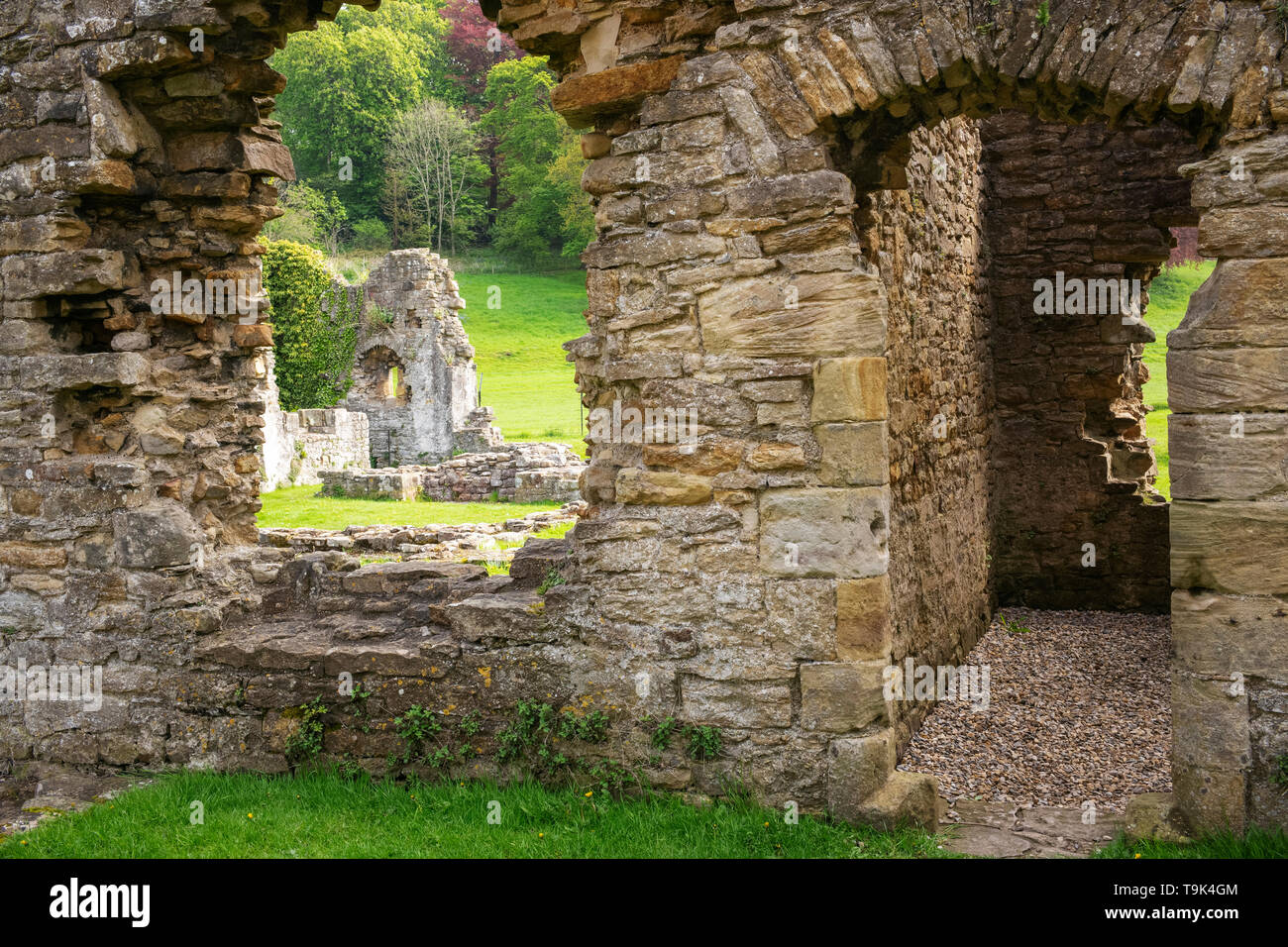 The atmospheric remains of Easy Abbey, Richmond, Yorkshire, UK - Stock Image