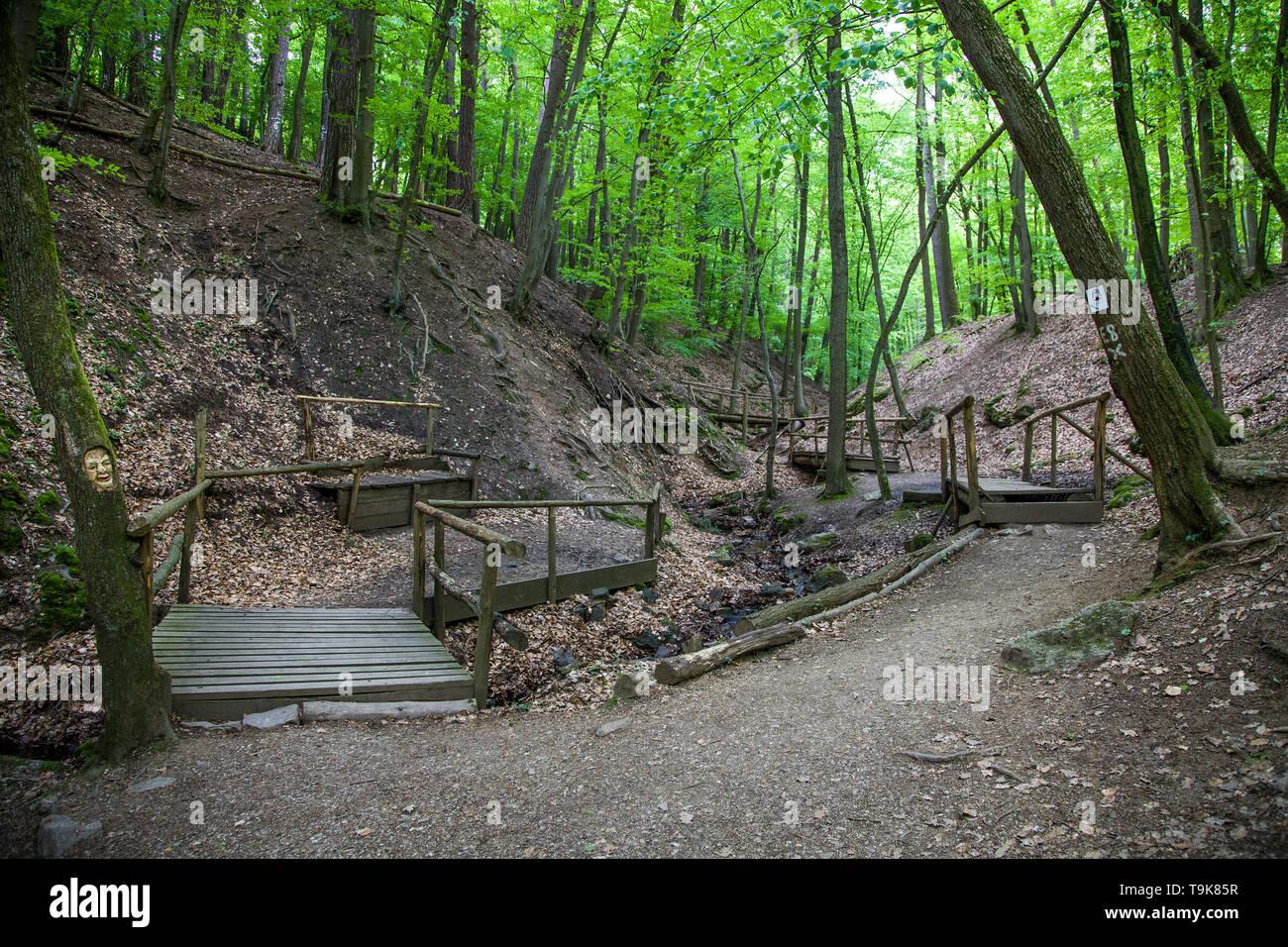 Wooden bridges over the stream Hasselbach at hiker trail Steckeschlääfer-Klamm, Binger forest, Bingen on the Rhine, Rhineland-Palatinate, Germany Stock Photo