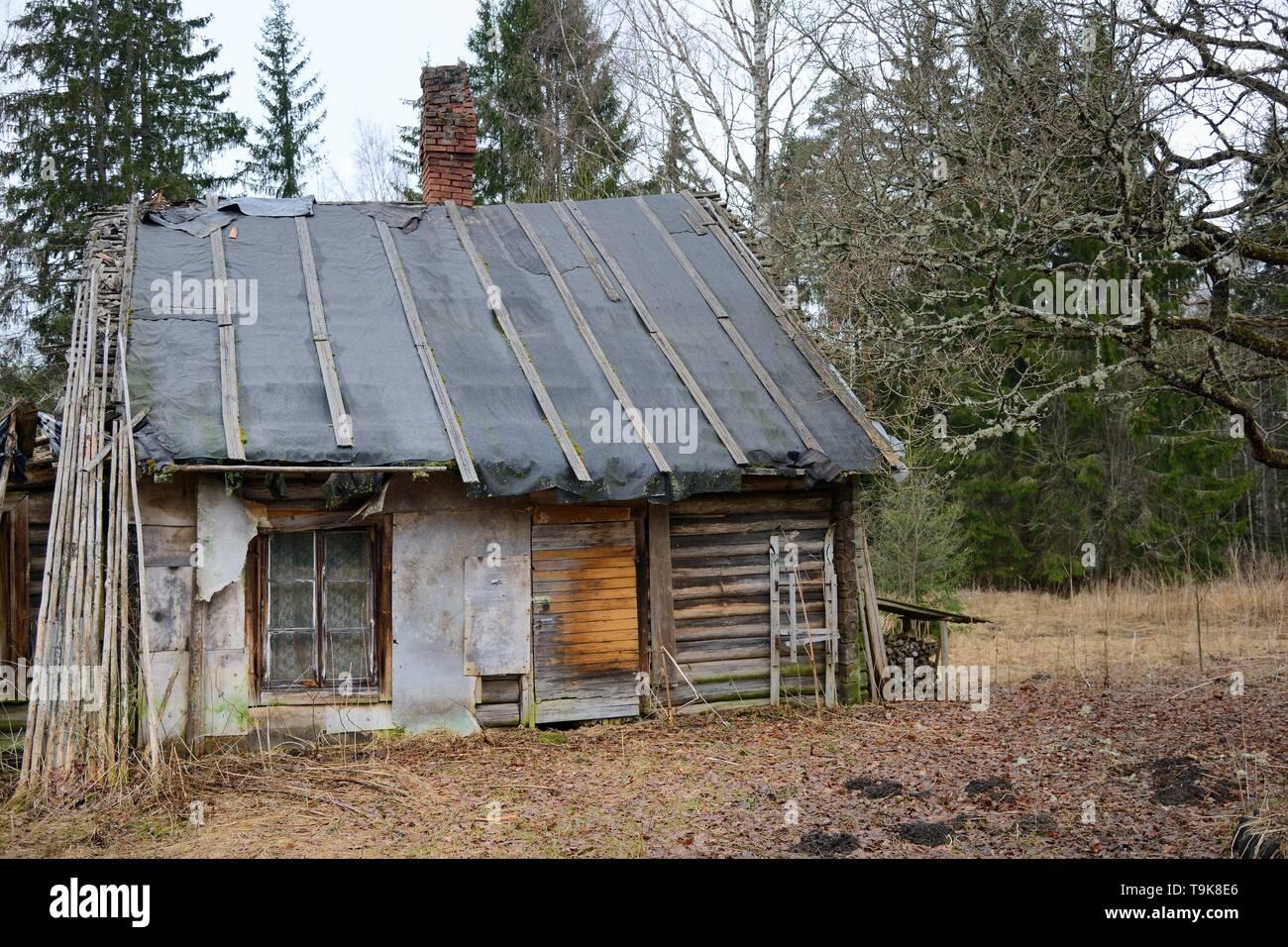 Derelict, abandoned cottage, Muraka Forest, Estonia, April 2018. - Stock Image