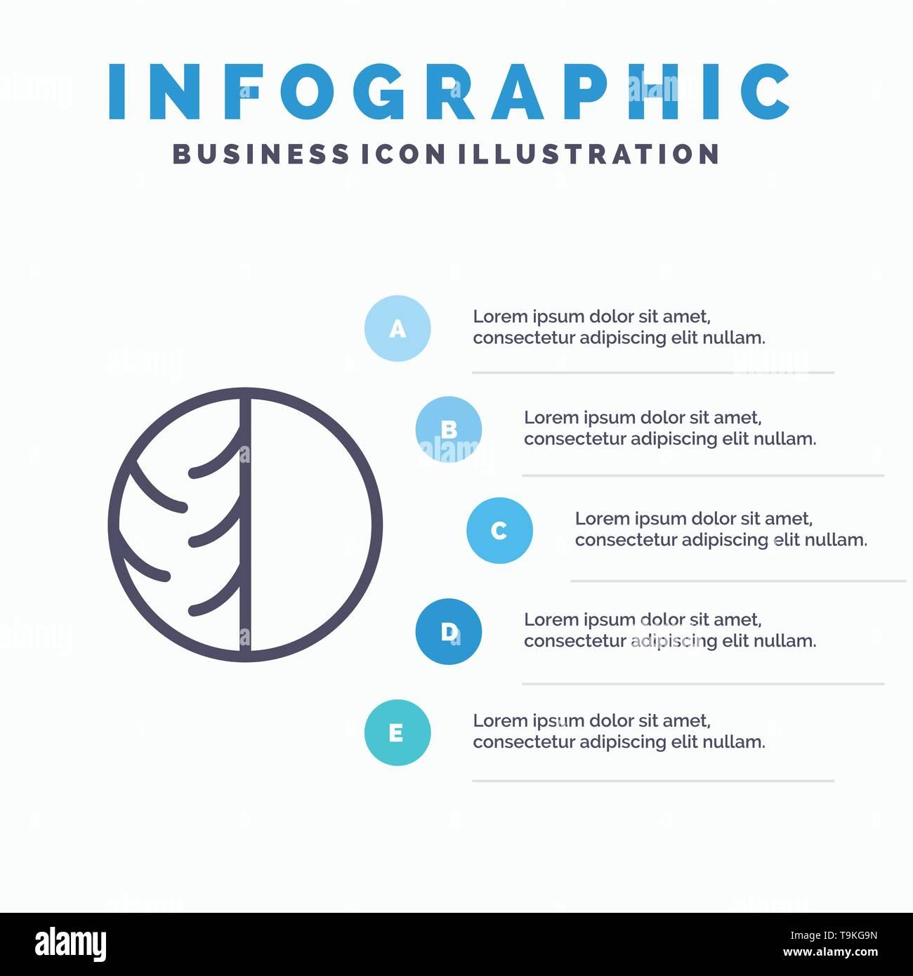 Dermatologist, Dermatology, Dry Skin, Skin, Skin Care, Skin, Skin Protection Line icon with 5 steps presentation infographics Background - Stock Image